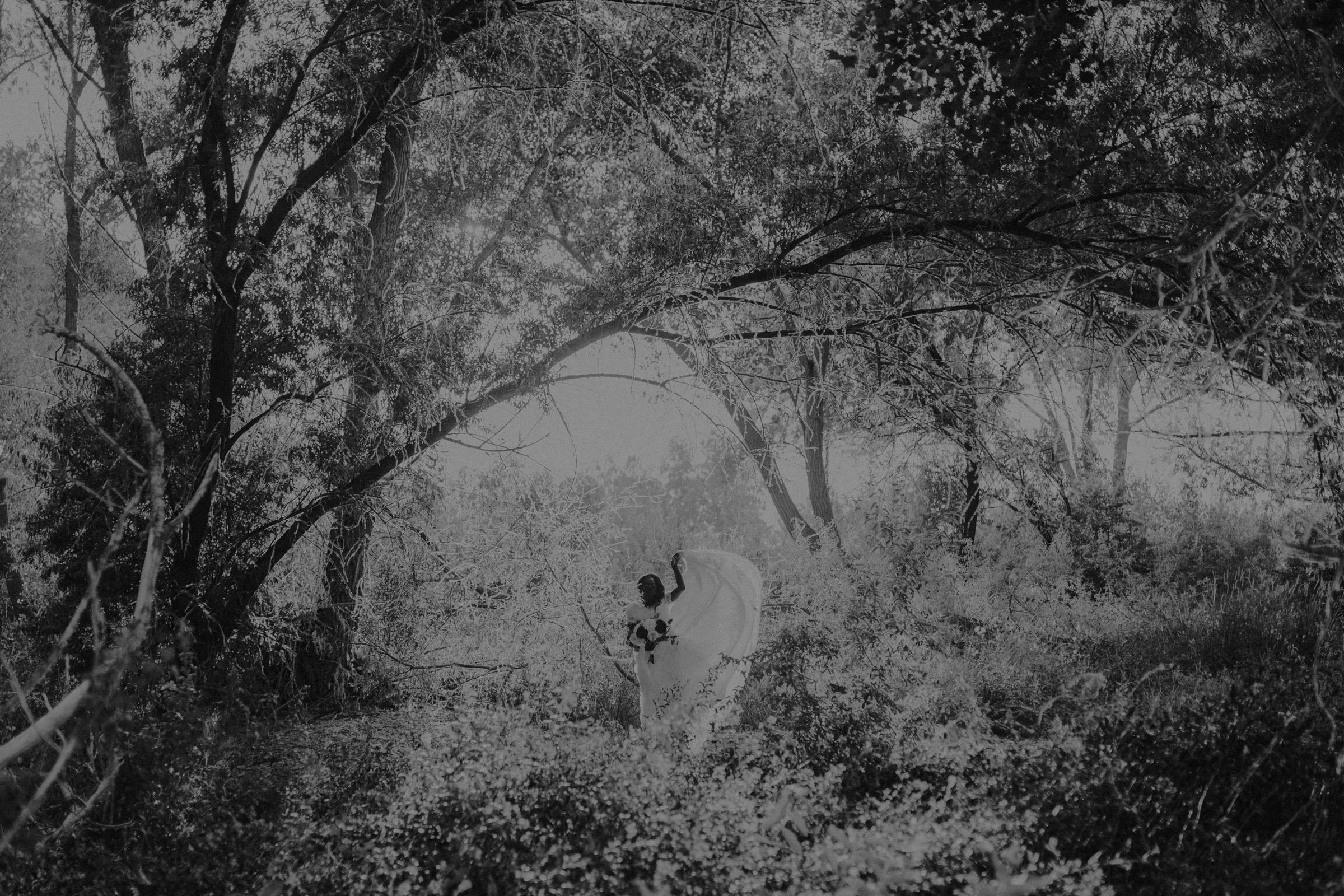 bride standing in grassy field with lots of trees