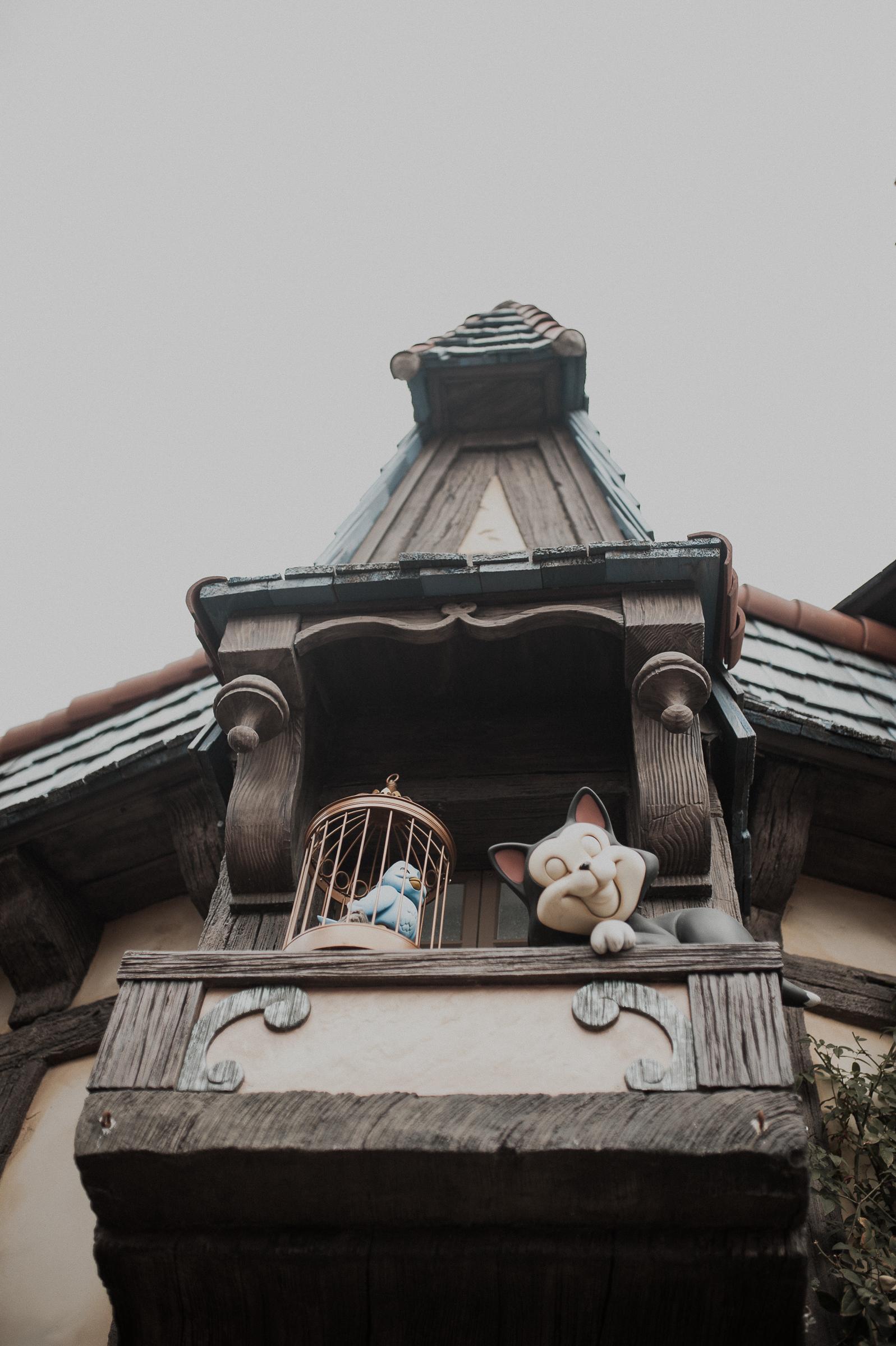 Disneyland-Anaheim-Photographer-11.jpg