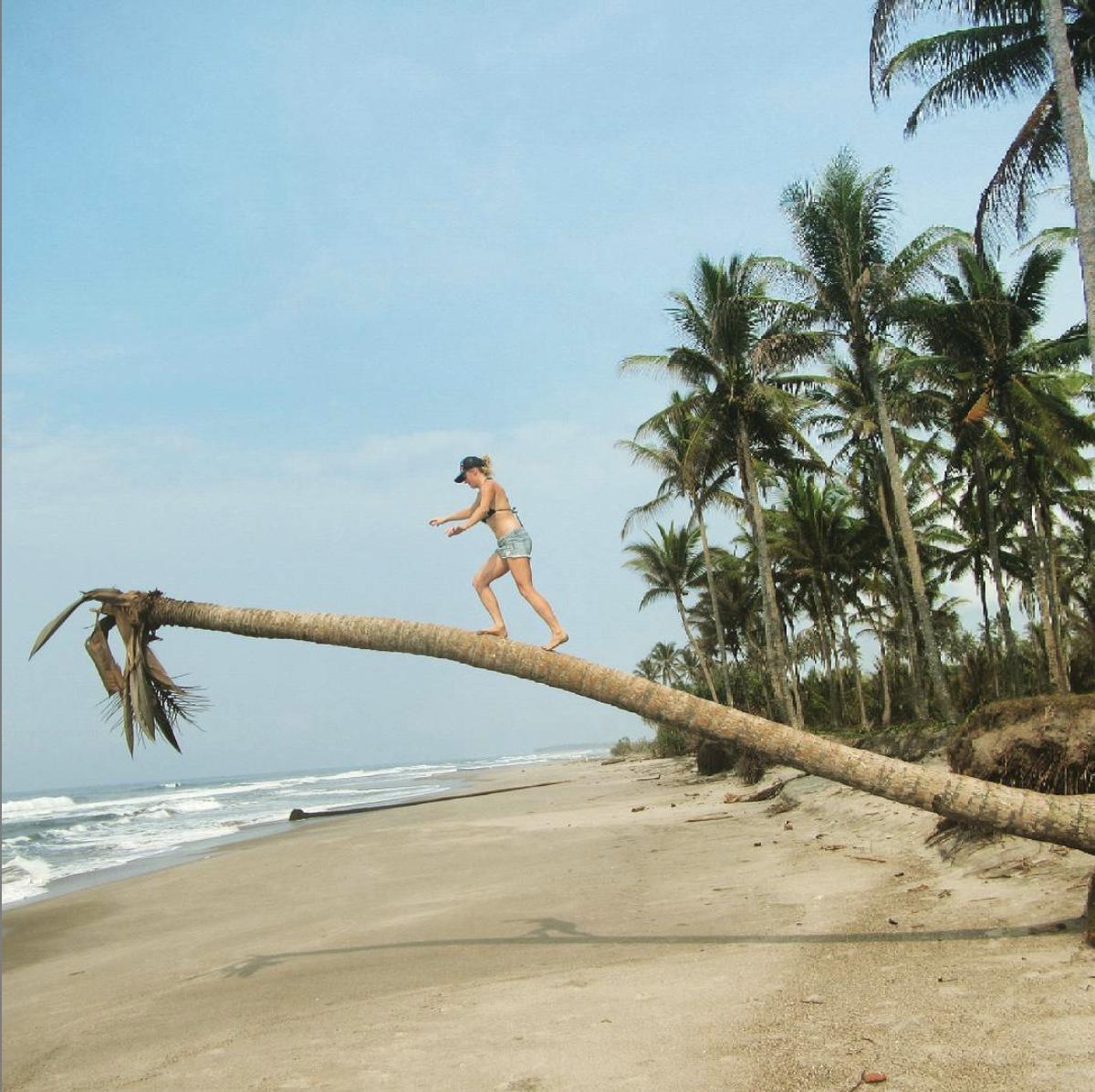 Palm-walking.jpg