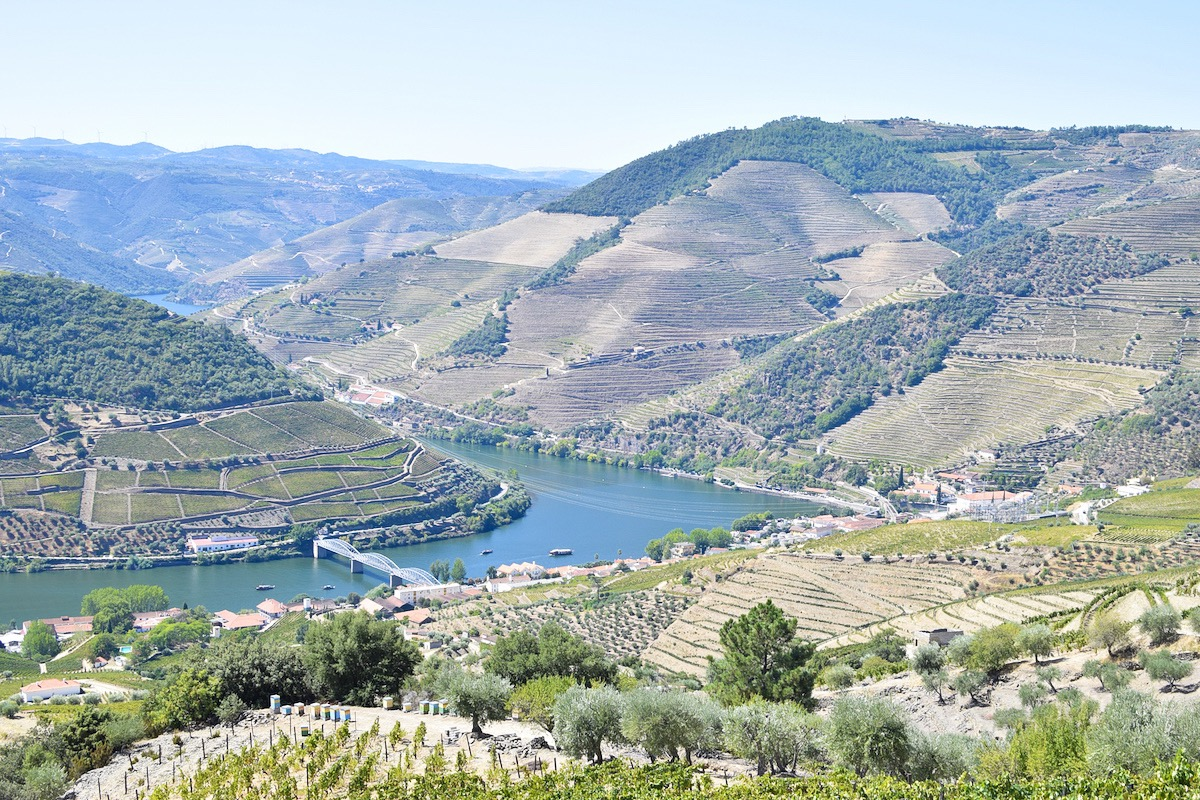 Wine-tasting-douro-valley.JPG