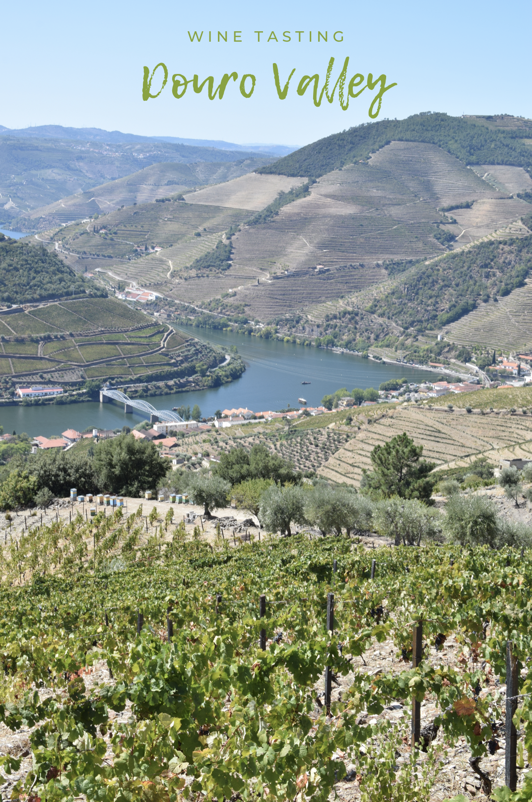 winetasting-douro-pin.jpg