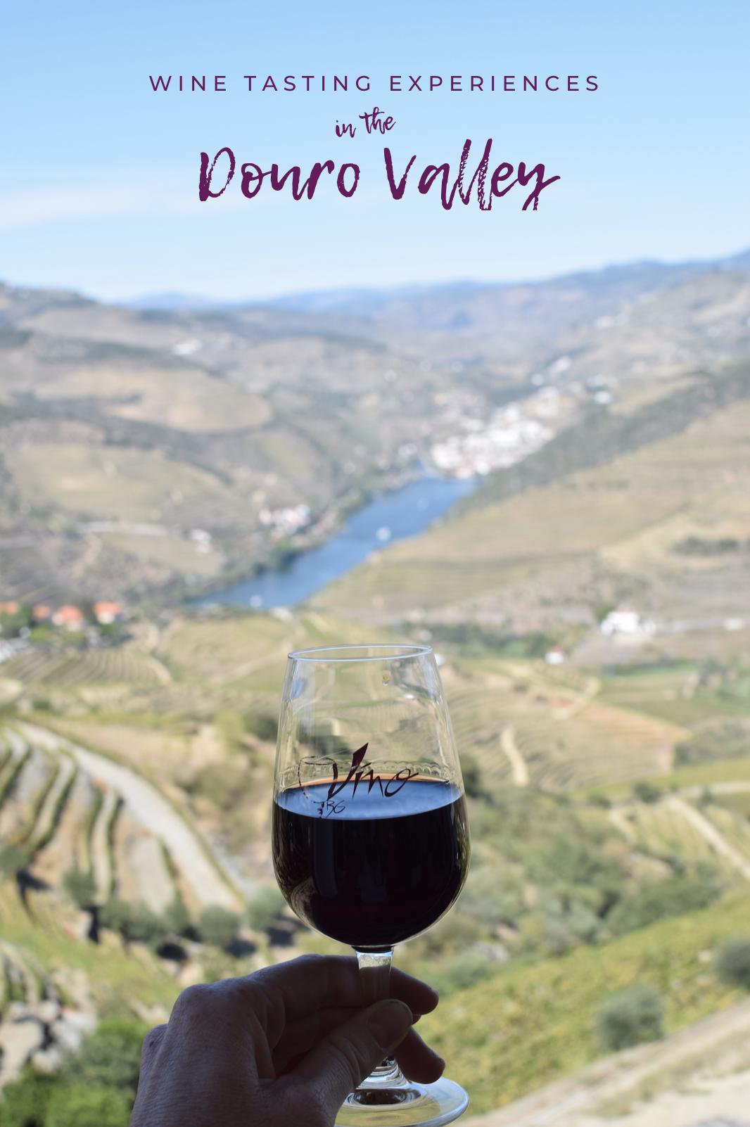 port-vineyards.jpg
