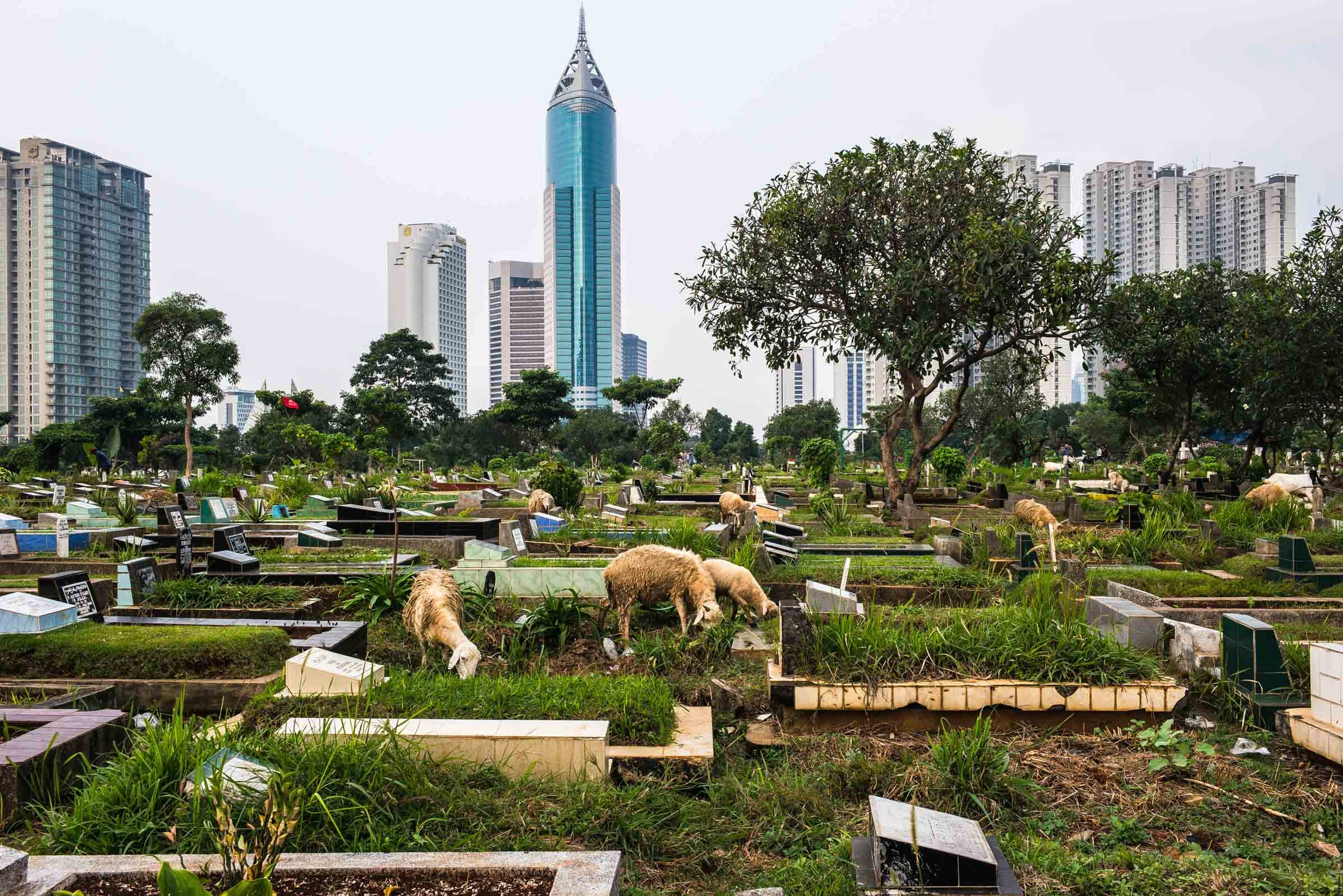 Jakarta: City of Contrasts