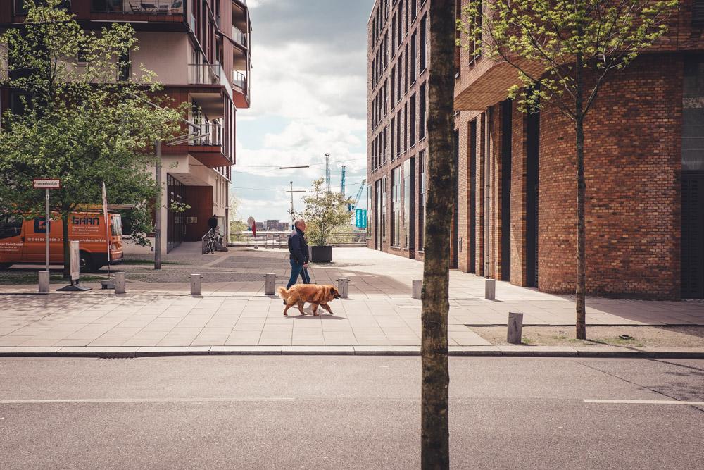 Man geht mit seinem Hund in der Hafencity Hamburg spazieren