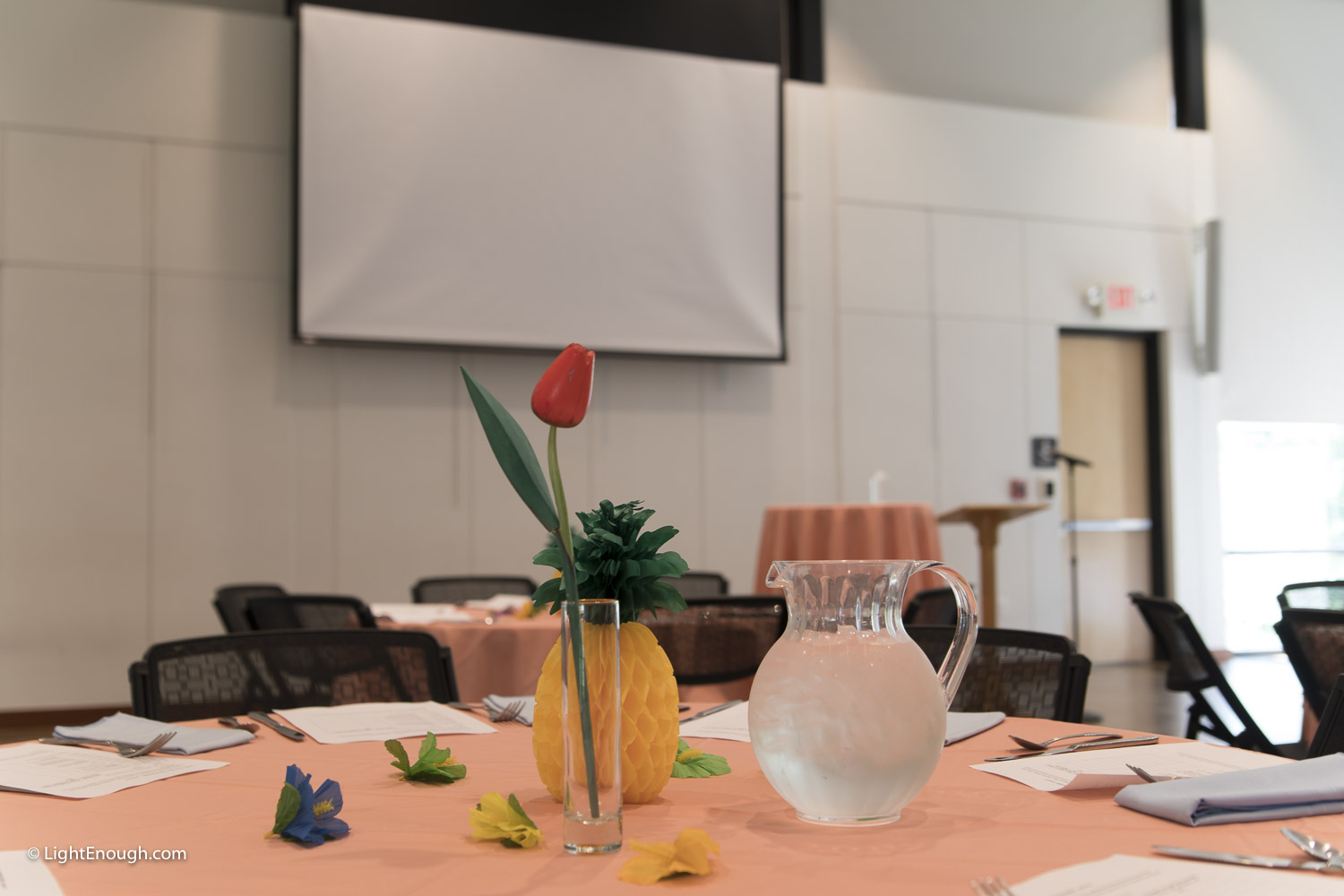 Table settings at the June 2017 meeting of the UUCA Day Alliance. Allen Keiswetter speaker. Photos by John St Hilaire / LightEnough.com