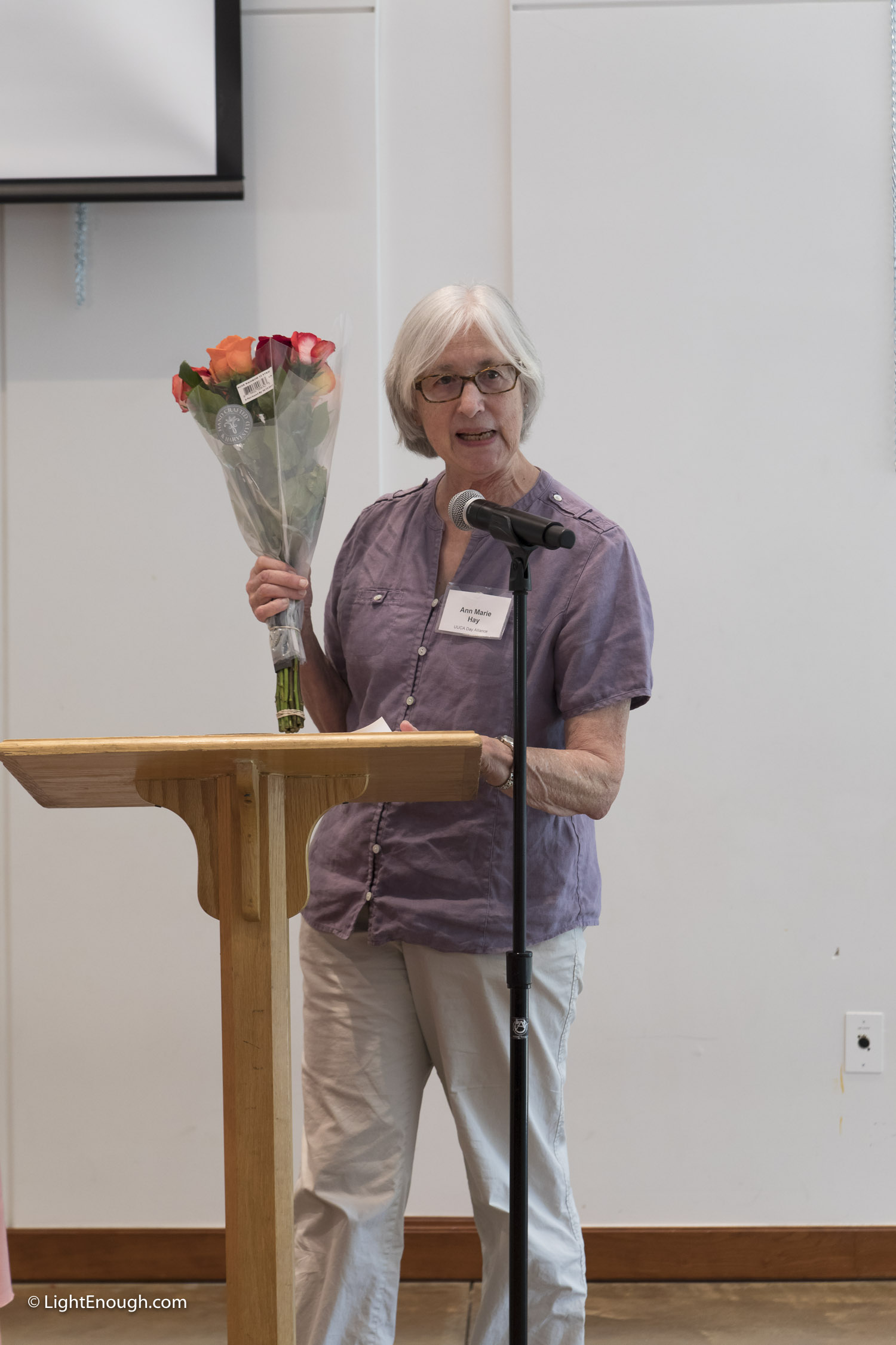 Ann Marie Hay at the June 2017 meeting of the UUCA Day Alliance. Allen Kiesweter speaker. Photos by John St Hilaire/LightEnough.com
