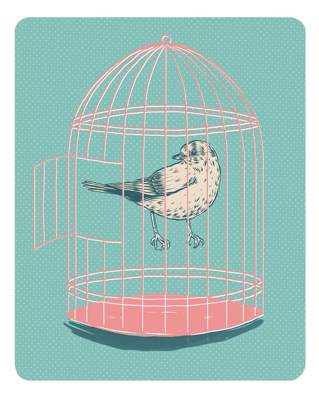 vogel.jpg
