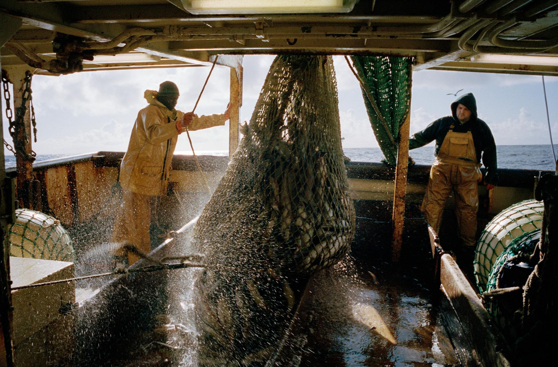 Babacar et Jérôme à l'arrière du bateau lors de la remontée du merlu.