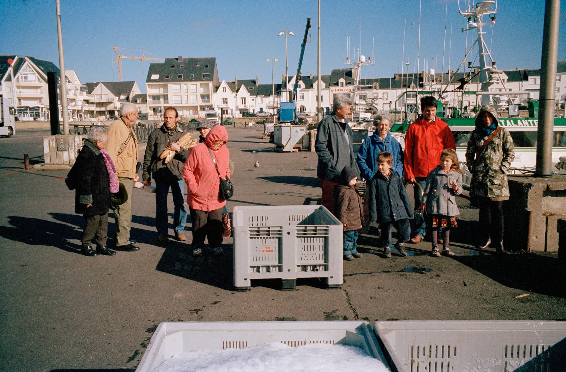 Déchargement du poisson, port de La Turballe, Loire atlantique. 2013