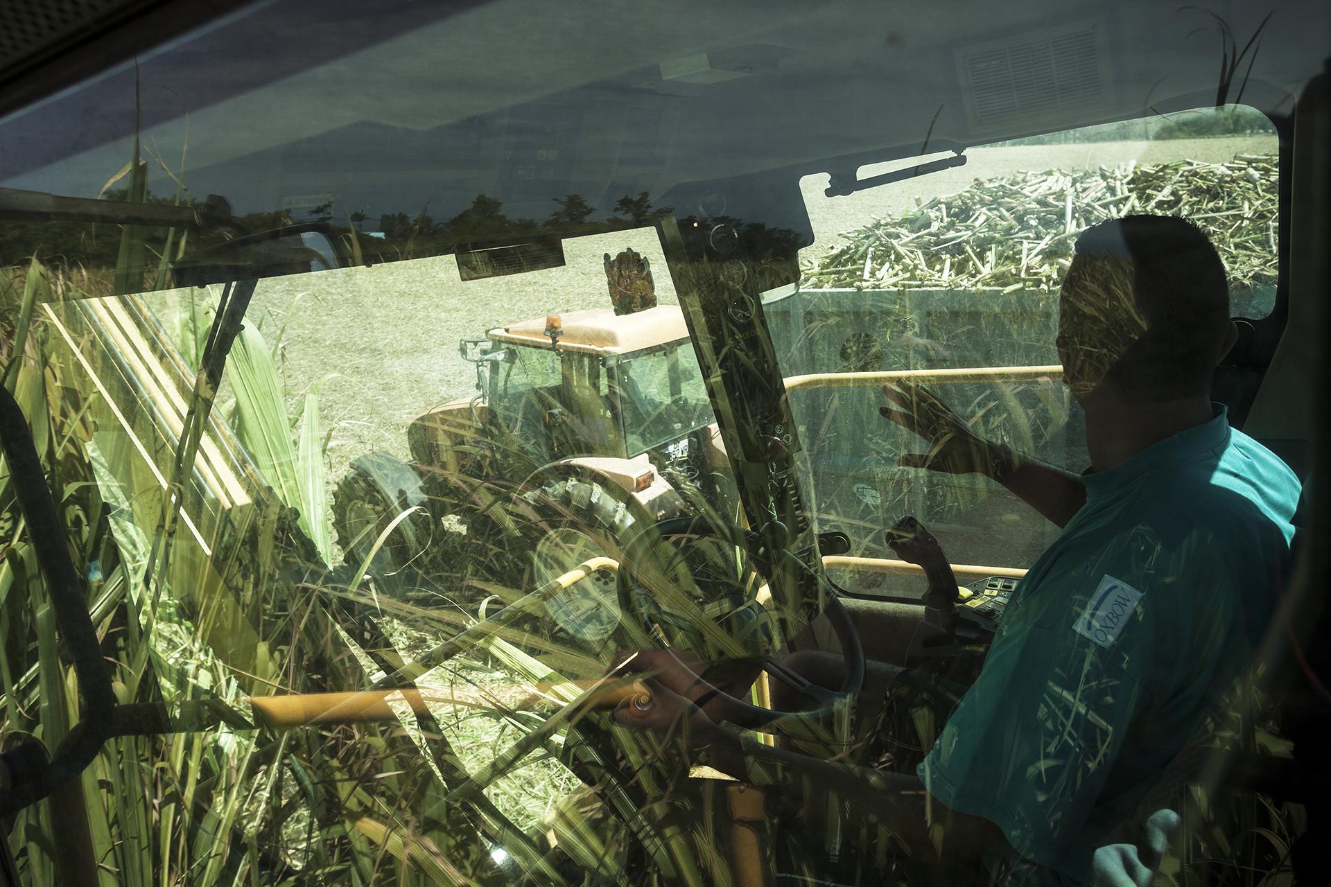 Récolte industrielle de la canne à sucre sur une des grandes propriétés du sud de l'île. Novembre 2012, commune de Saint-Pierre, île de la Réunion.