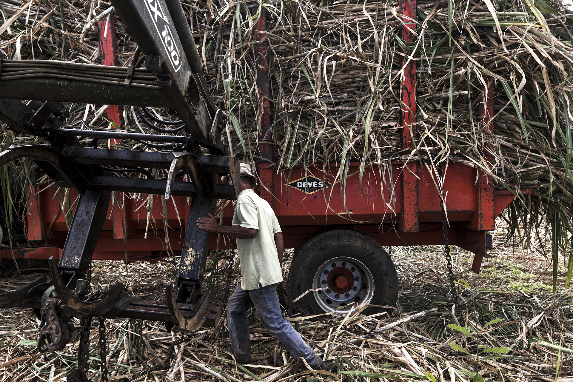 Après une grosse matinée de travail, le chargement des cannes à sucre est prêt pour partir à la balance afin d'être pesé puis à l'usine de traitement. Juillet 2014, commune du Tampon, île de la Réunion.