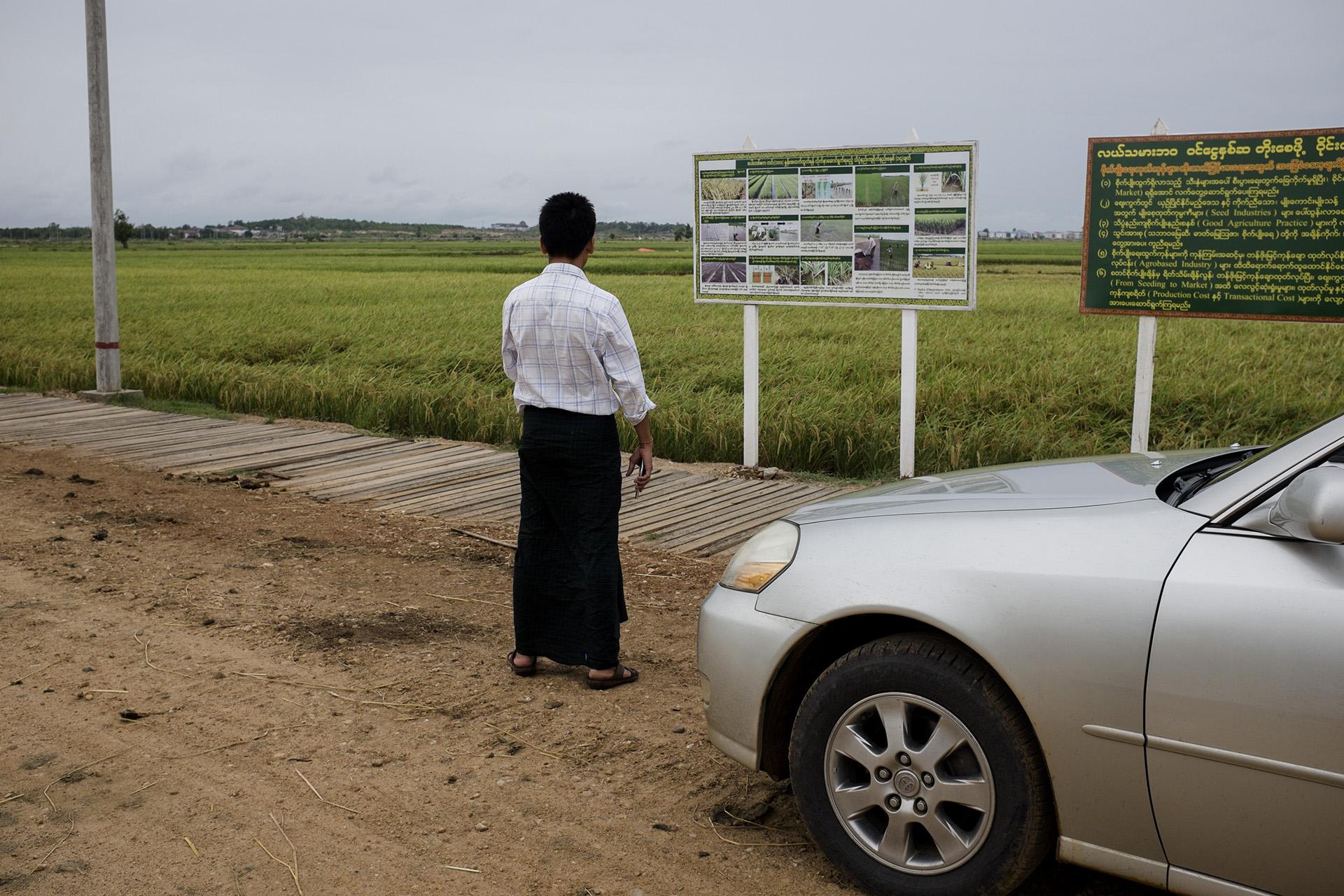 Cet homme a décidé quelques années plus tôt de devenir taxi pour augmenter ses revenus mais il garde un champ qu'il cultive encore. Dans certaines zones de la ville, les rizières occupent la majorité de l'espace, les populations déplacées ont souvent étés relogées dans ces zones. Naypyidaw, Birmanie. Mai 2015.