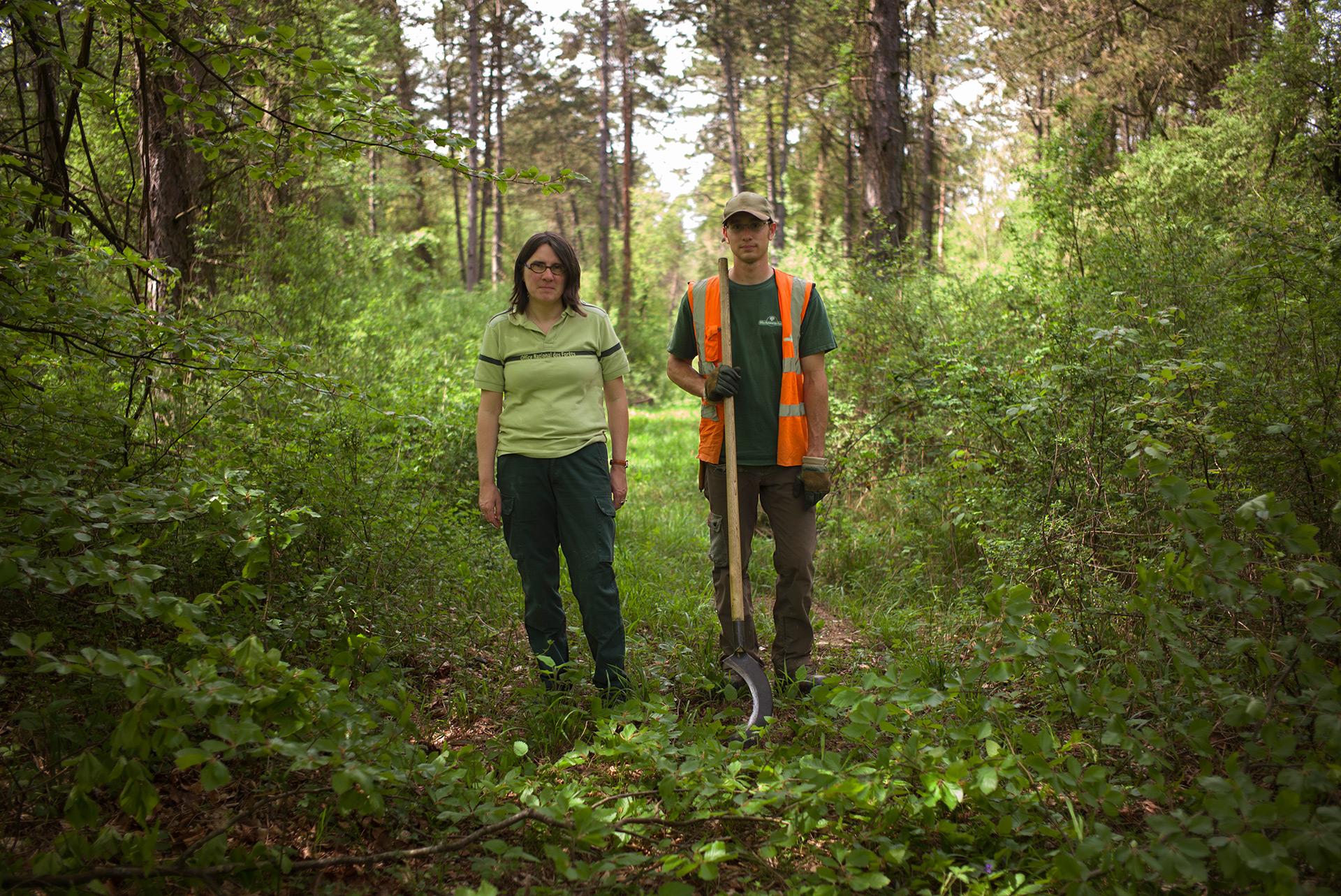 Brigitte Musch, responsable du conservatoire génétique des arbres forestiers, et un ouvrier de l'ONF, sur une parcelle de la forêt Domaniale de Verdun. Meuse, Alsace-Champagne-Ardenne-Lorraine, 09.05.2016