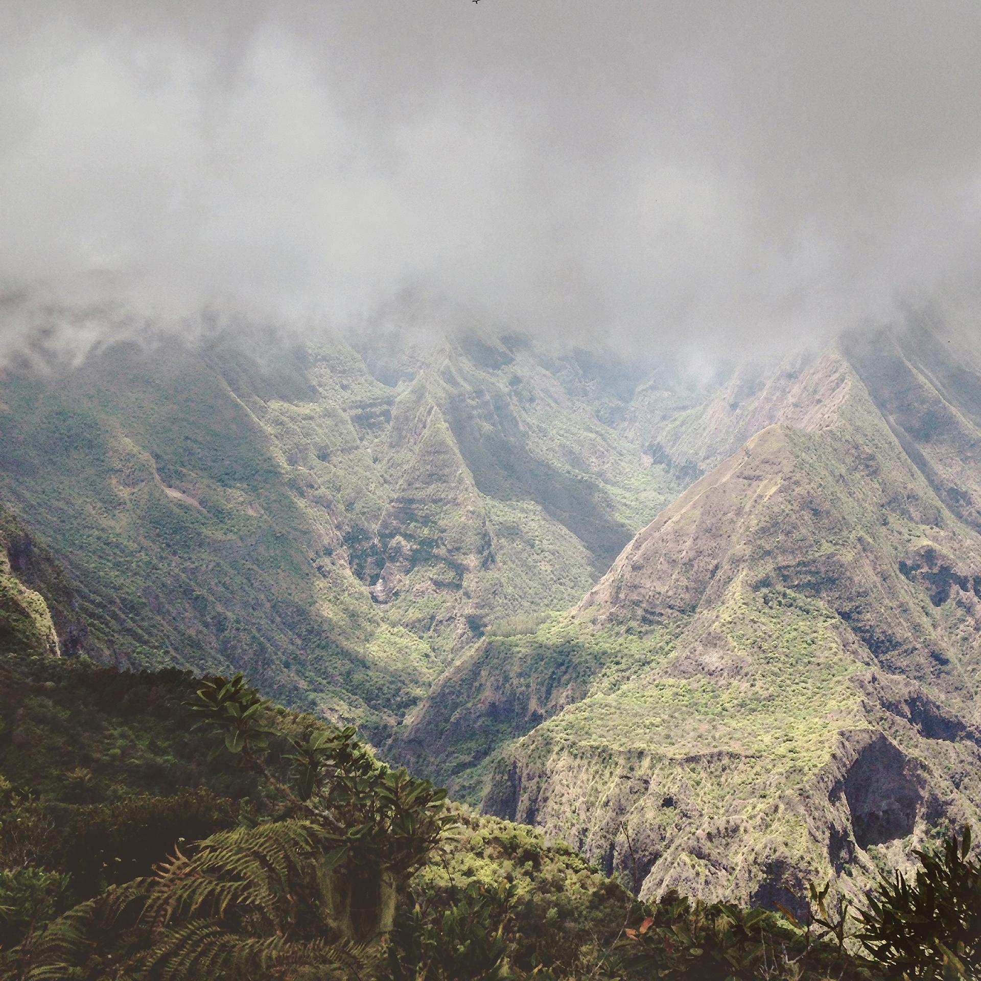 MFache_OctNov2016_InstKreol_Ile de La Reunion_0086.jpg