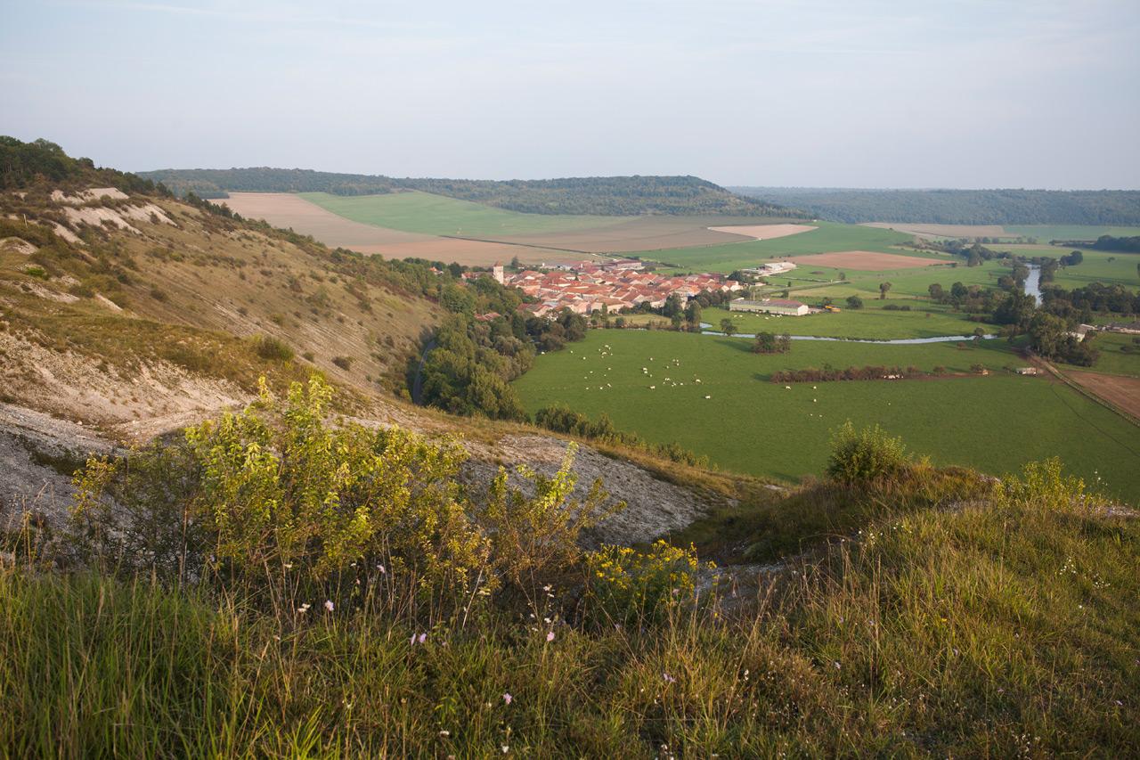 12_©Nicolas_Leblanc_08.09.14_Meuse-sauvage_Pagny-la-blanche-côte_IMG_8457.jpg