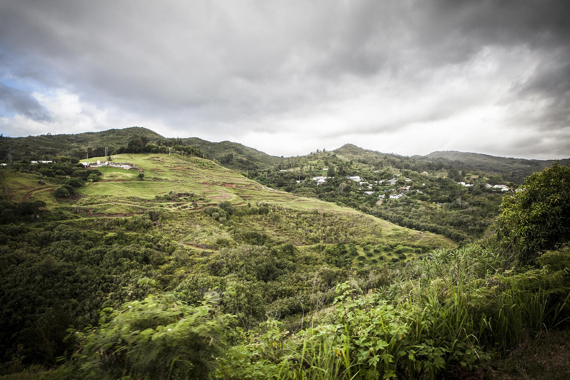 MFache_Mars 2015_Commande_SODIPARC_Ile de la Reunion