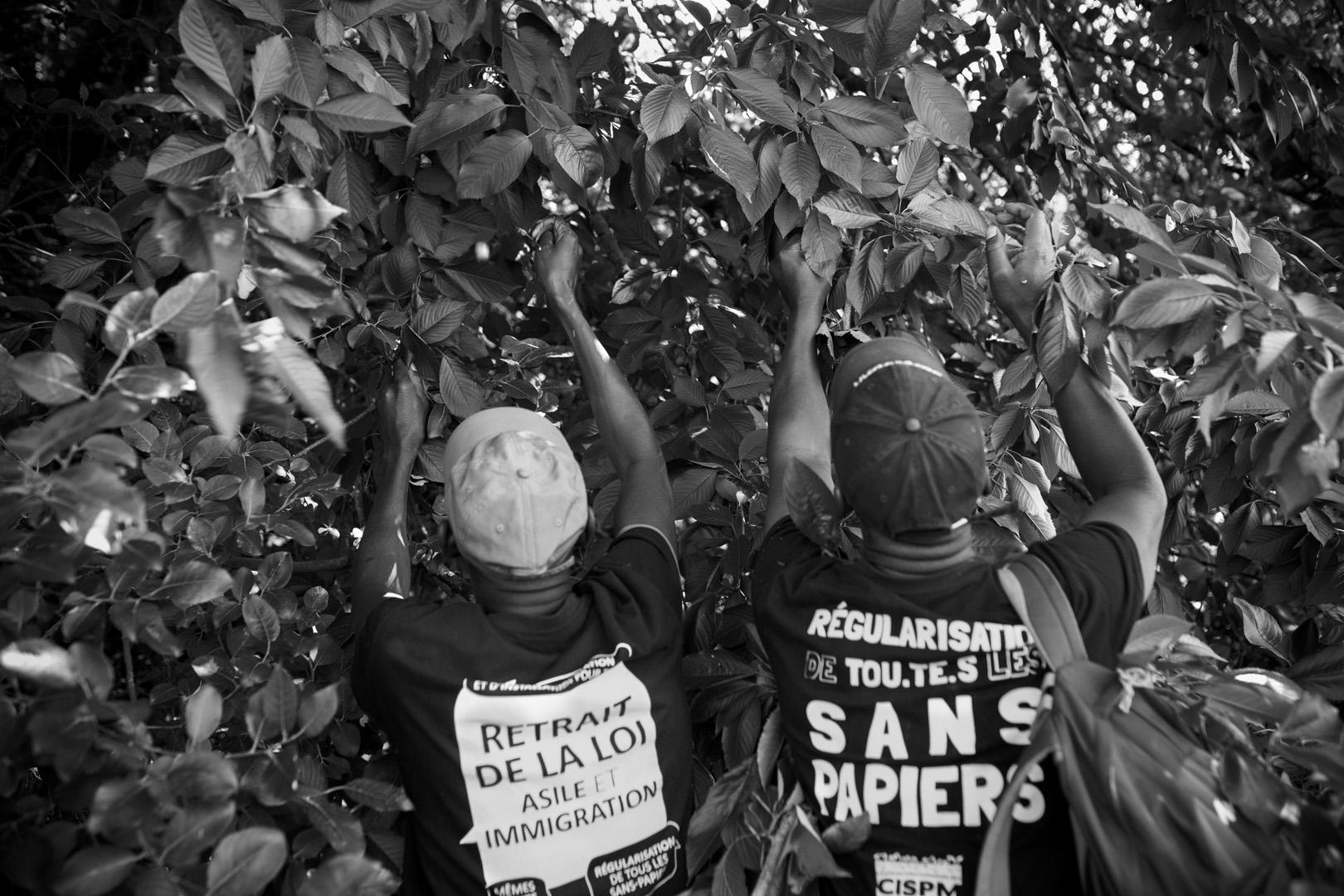 Étape entre Cambrai et Douai. Marche solidaire organisée par l'auberge des migrants.