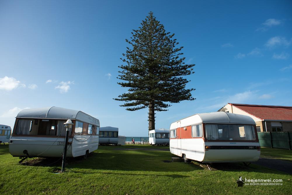 Campers at Tauranga.