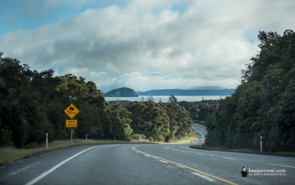 On the road from Lake Taupo towards Tongariro National Park.