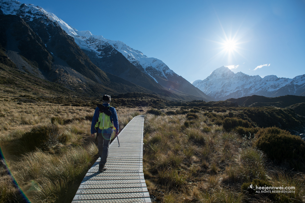 Trekking at the Hooker Valley Track - 3 hrs returns.