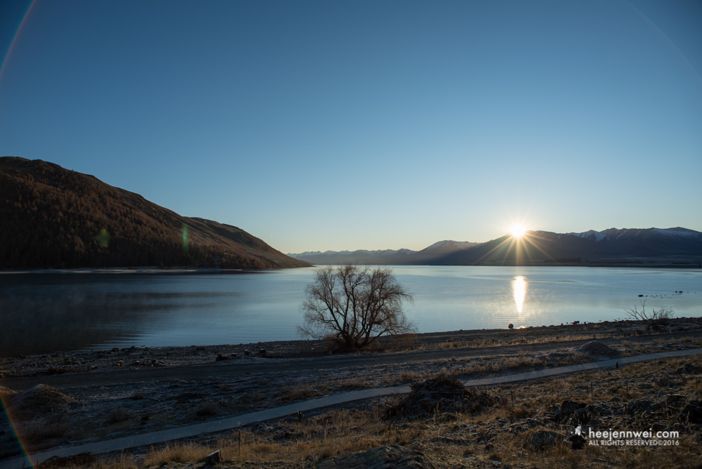 The last glimpse of Lake Tekapo sunrise, before heading over to Christchurch.