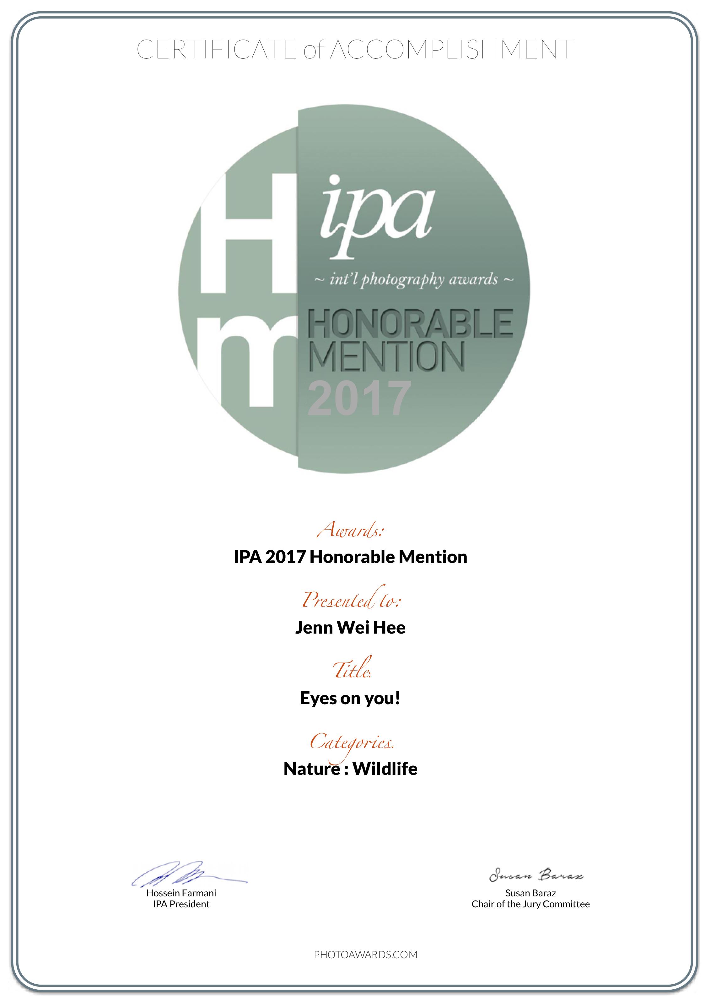 IPA-Honorable-Mention.jpg