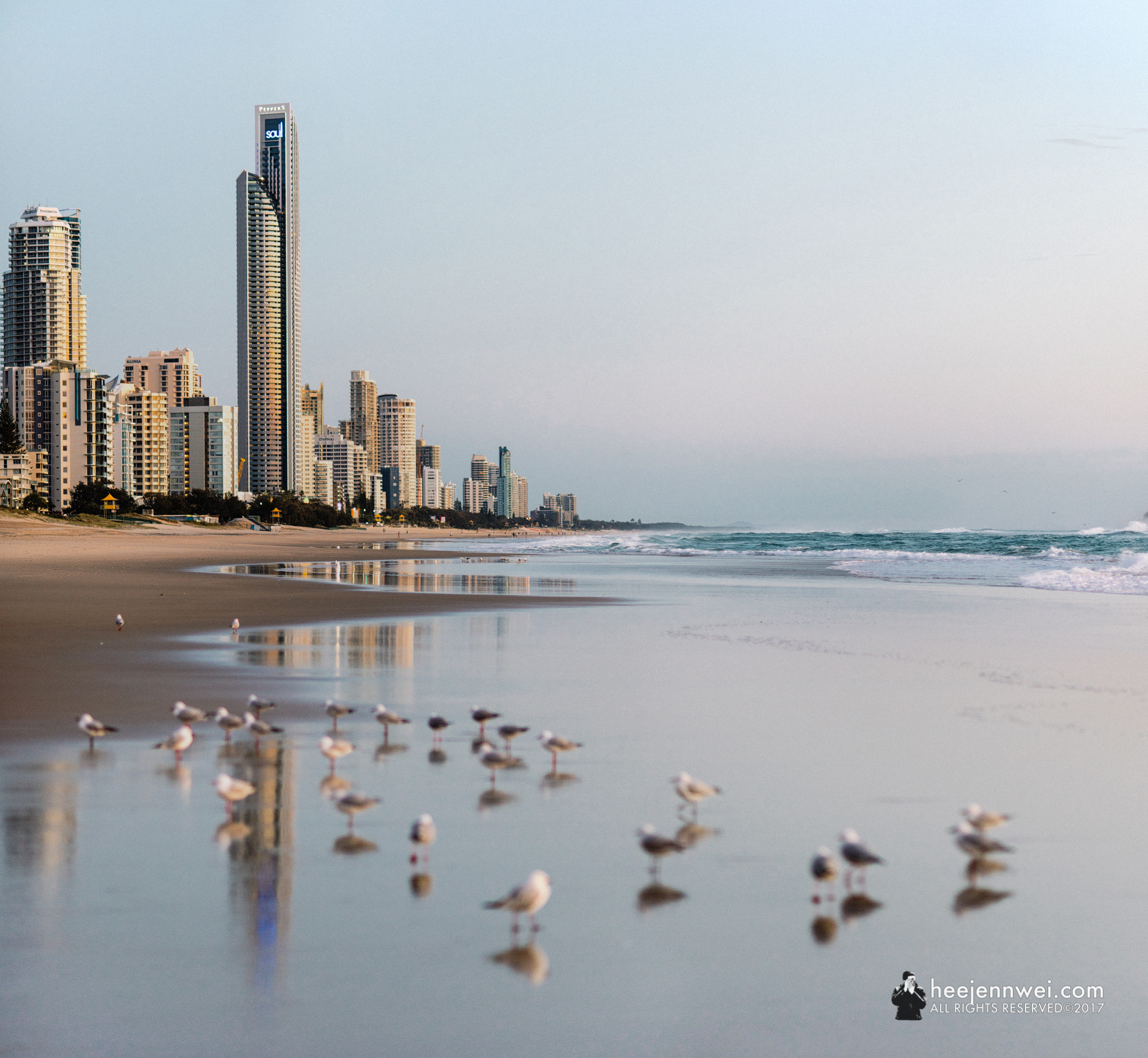 The next morning, i head out at 4.30am to catch the twilight before sunrise. Flock of Silver Gulls formed a visual mass in the foreground, the shoreline shaped a leading line in the mid-ground, the signature towering skyline defined the background of Gold Coast and reflected.