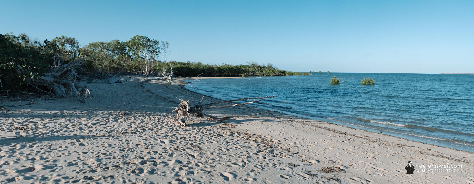 Our Airbnb backyard! McEwens Beach.