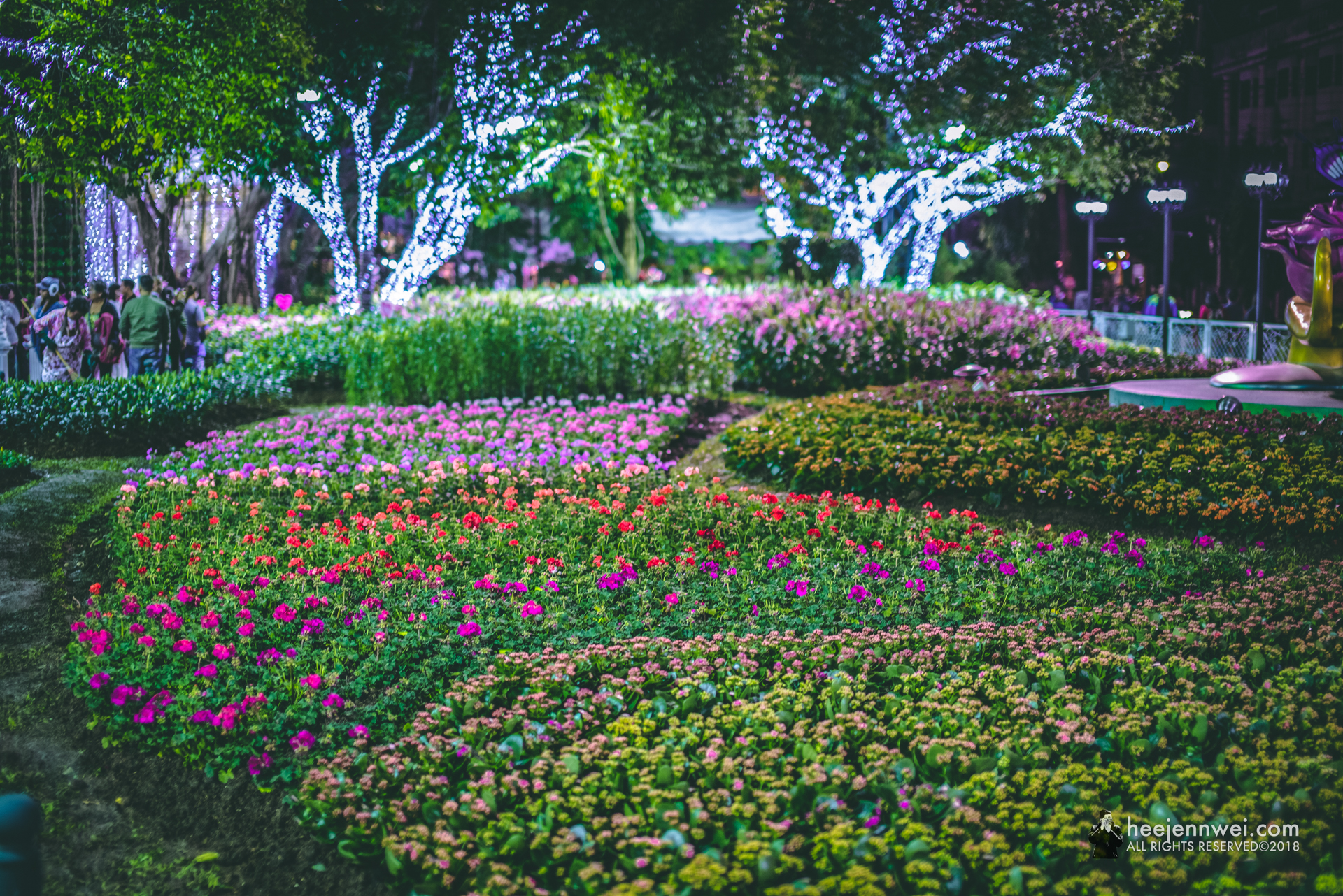 The December cool weather and hilly climate of Northern Thailand made it perfect place to grow many different type of flowers and plants, and they decided to make it into a show of Flower Festival!