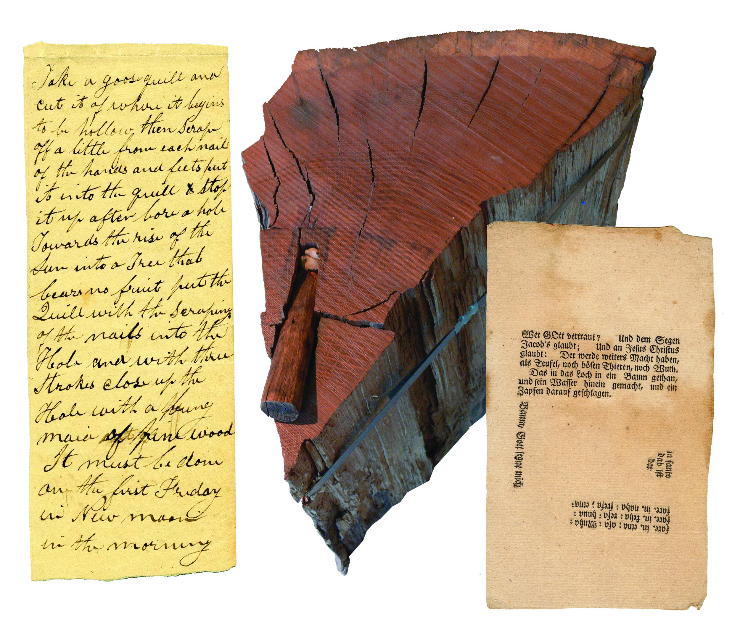 """Figure 5: The practice of """"plugging"""" illness into trees is well-documented among many cultures—Pennsylvania Dutch, Lenape, and English. Early accounts provide details of this procedure, and evidence of """"plugged"""" trees was still found in the 20th century.   Left : Manuscript Directions for Transfering Illness Into a Tree, ca. 1860-1880 Heilman Collection of Patrick J. Donmoyer.  These manuscript instructions provide a process for ritually transferring an illness into a tree: """"Take a goose quill and cut it of[f] where it begins to be hollow, then scrape off a little from each nail of the hands and feets put it into the quill & stop it up after bore a hole towards the rise of the sun into a tree that bears no fruit put the quill with the scraping of the nails into the hole and with three strokes close up the Hole with a bung maid of pine wood. It must be done on the first Friday in new moon in the morning.""""  The timing of this ritual was crucial, for the new moon was believed to exert a force down and inward, driving the illness into the tree; it was believed that the movement of the sun westward would reinforce the same movement of the illness into the tree. Friday was considered a beneficial day to begin such an undertaking because of its association with the crucifixion of Christ on Good Friday, and the initiation of the salvation and healing of the world in Christian tradition.    Middle : Plugged Oak Tree Remnant, Mid-19th century, [Schaefferstown, Lebanon County] Thomas R. Brendle Museum, Historic Schaefferstown.  Discovered by a farmer chopping wood on a farm between Reistville and Schaefferstown, Lebanon County. According to local interpretation, the tree was believed to have been close to a century old when the peg and ritual deposit was placed for transferring illness into the tree, over a century prior to having been cut down. One hundred twenty annual growth rings were counted from the bark to the peg.   Right : """" Baum-Segen """" Broadside Prayer and Tree Plug"""