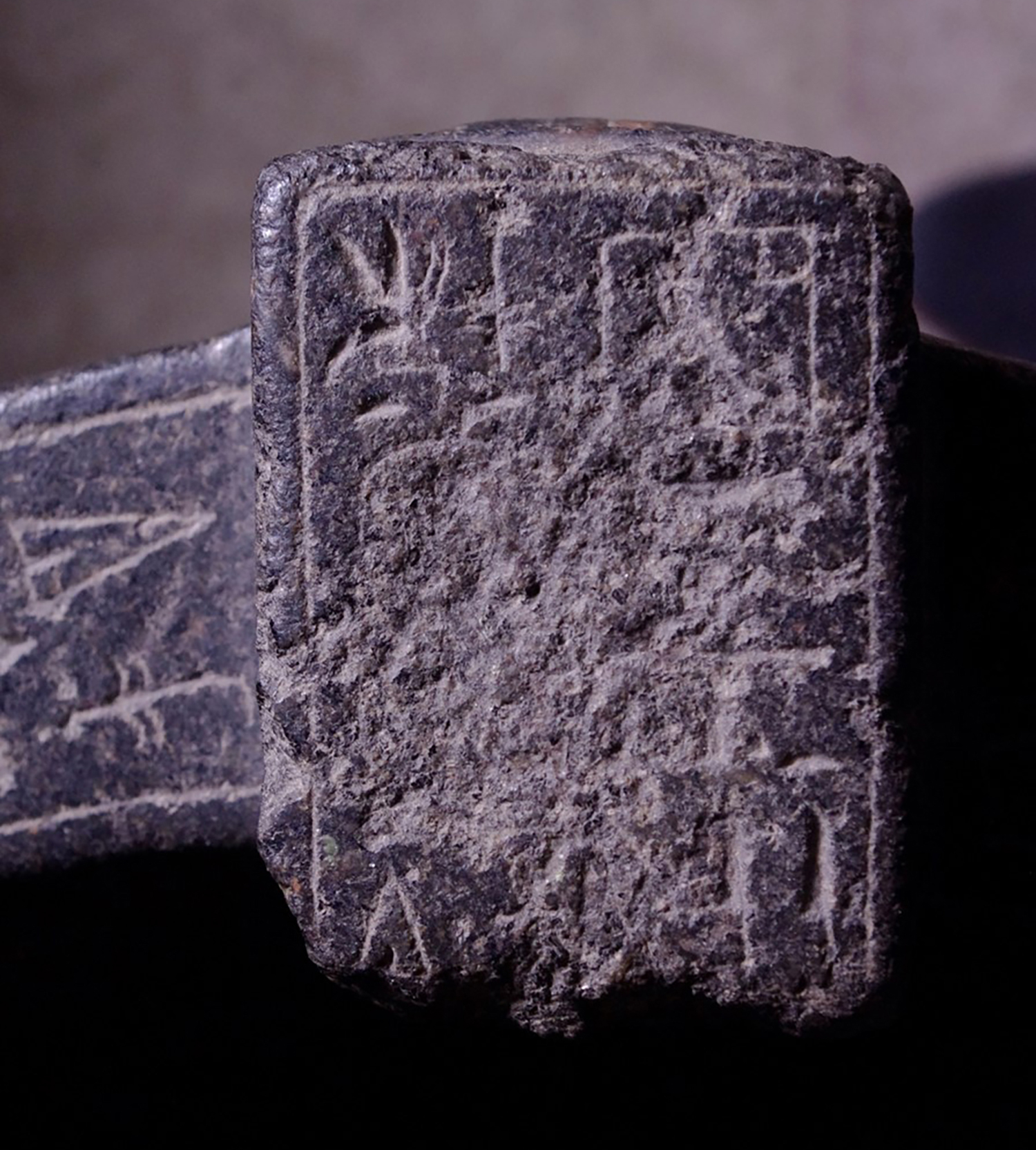 Figure 25: A view of the rectangular raised portion of the rim with a short hieroglyphic inscription. One can see the areas of damage near the oval-shaped cartouche on the left.