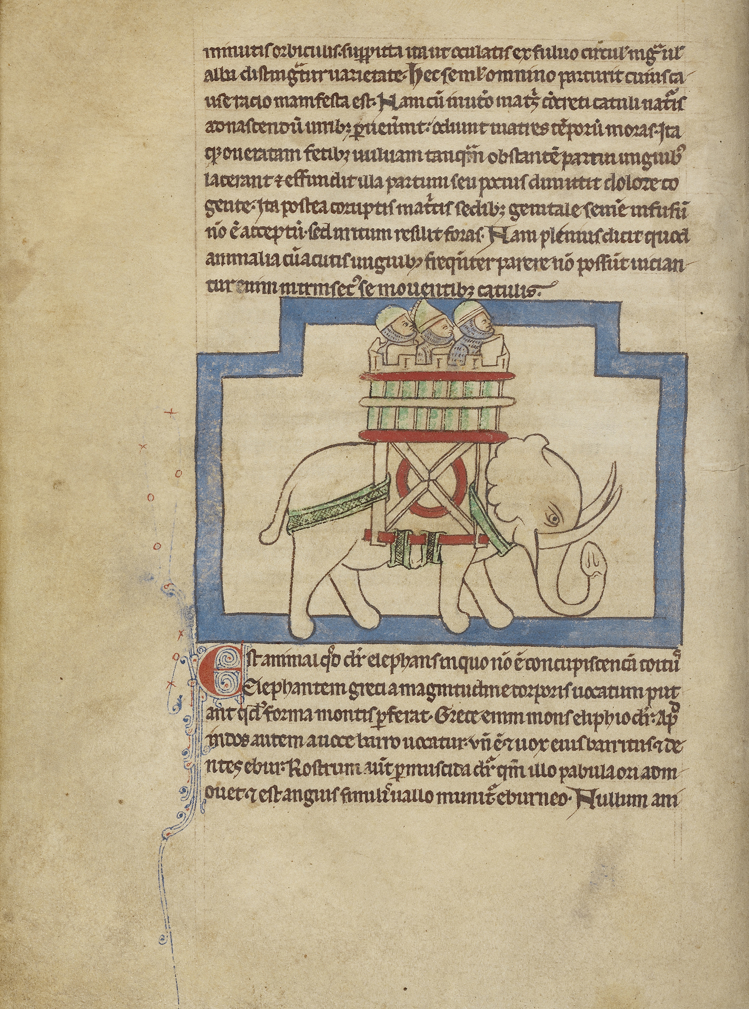 Figure 4: An Elephant, about 1250 - 1260. Pen-and-ink drawings tinted with body color and translucent washes on parchment. The J. Paul Getty Museum, Los Angeles, Ms. 100 (2007.16), fol. 17V.