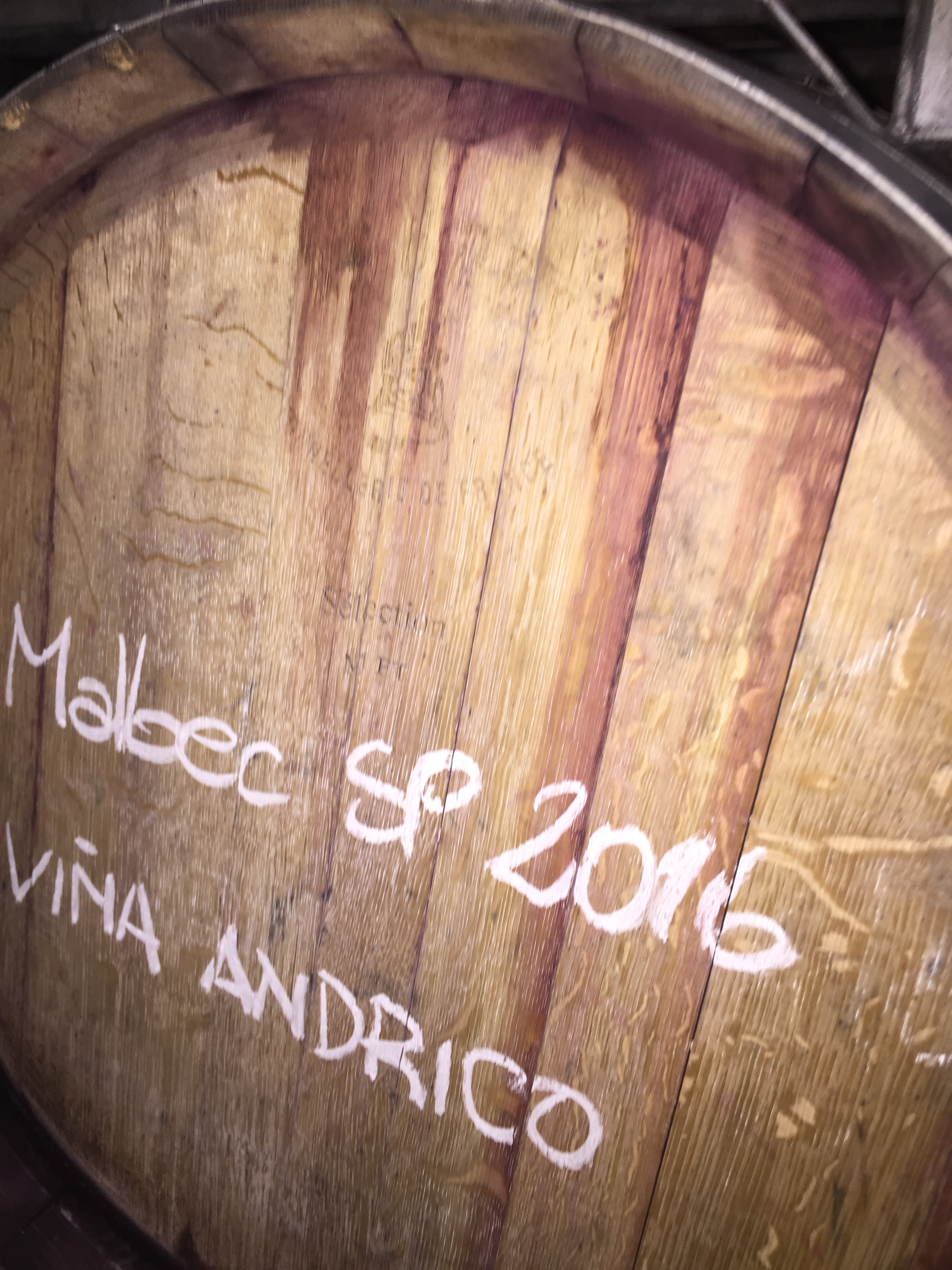 We age our wine in French oak barrels between 24 - 30 months. Vina Andrico vineyard in Mendoza, Argentina.