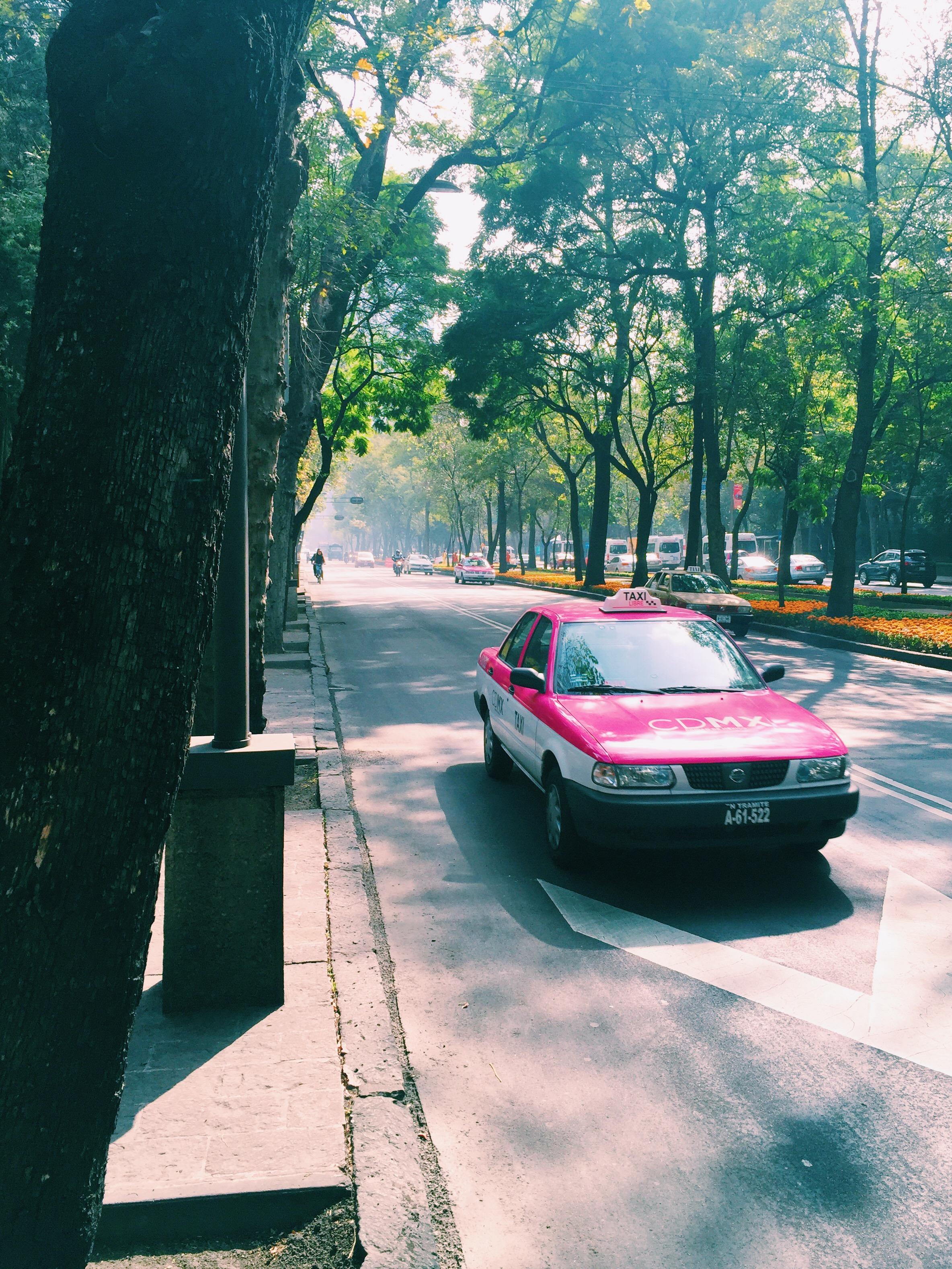©2016 Rogelio Puente Photography Mexico City