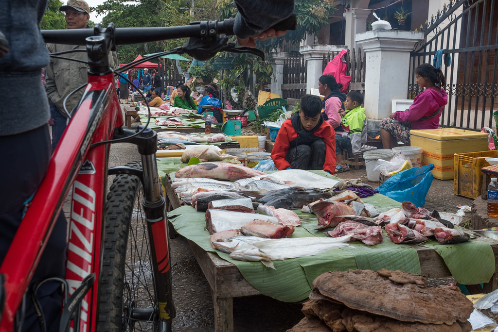 Cycle to Bustling Markets