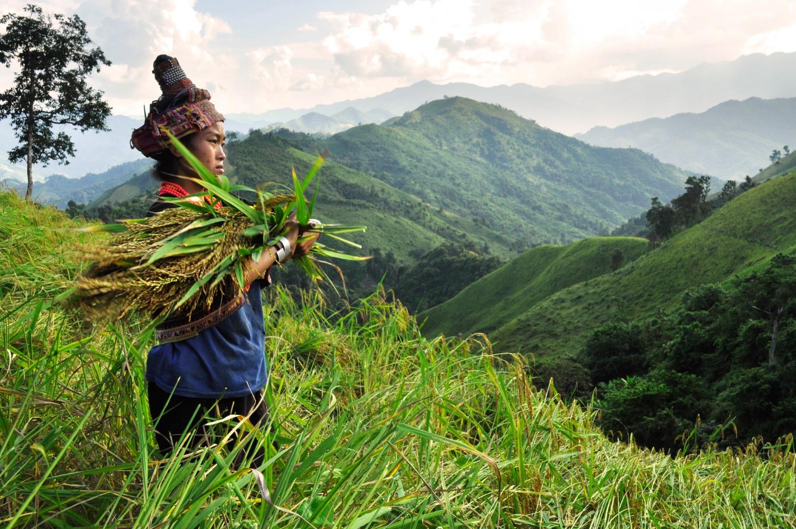laos-muang-khua-akha-field-landscape-dsc4670jpg_15387312515_o-David-Allan.jpg