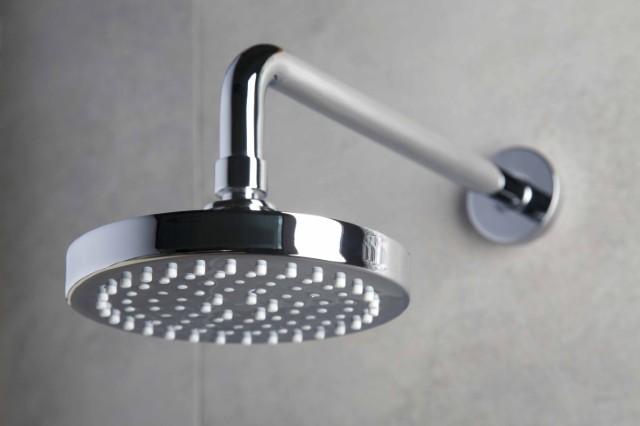 Hotel Shower Head_jpg.jpg