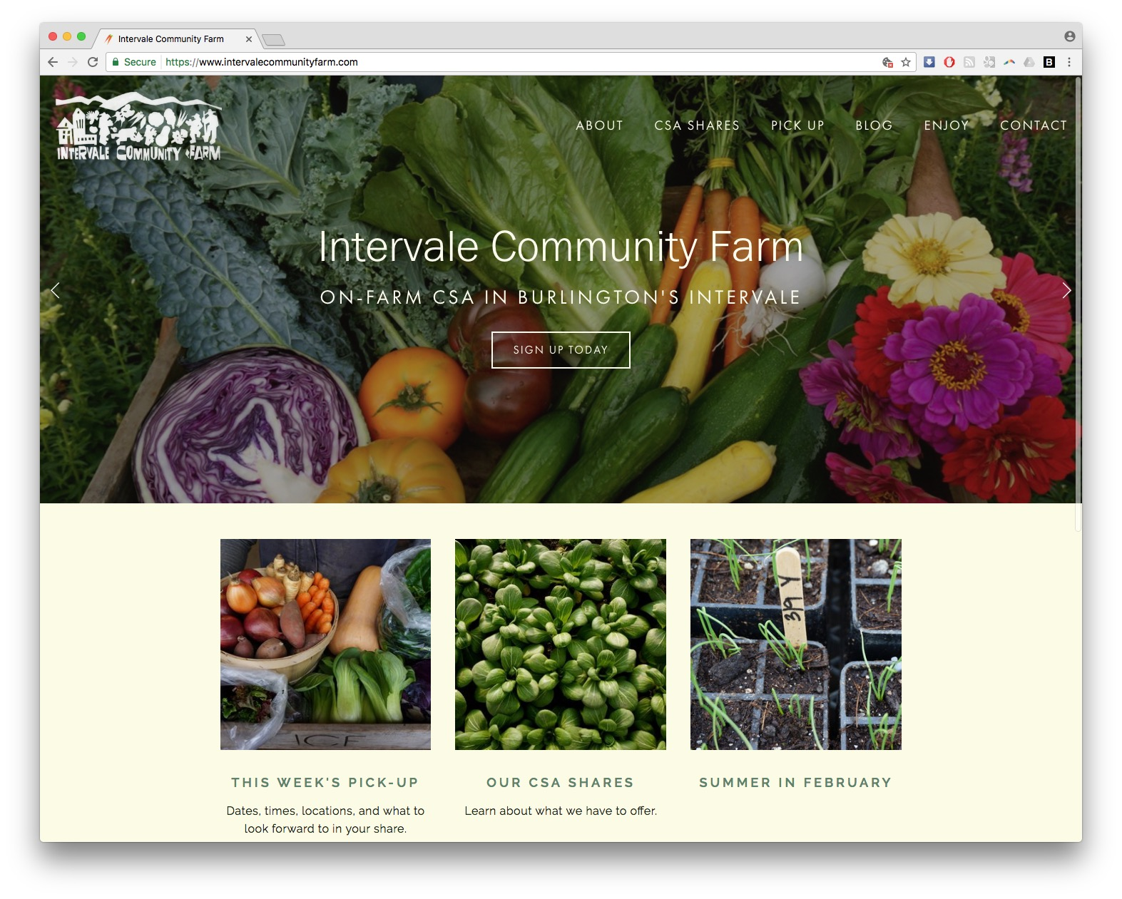Intervale Community Farm Homepage Screen Shot Thumbnail Web Design Burlington Vermont Squarespace