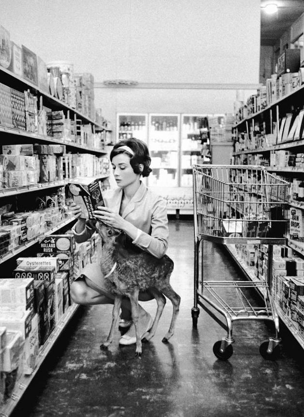 Audrey-Hepburn-and-her-pet-deer-628x861.jpg