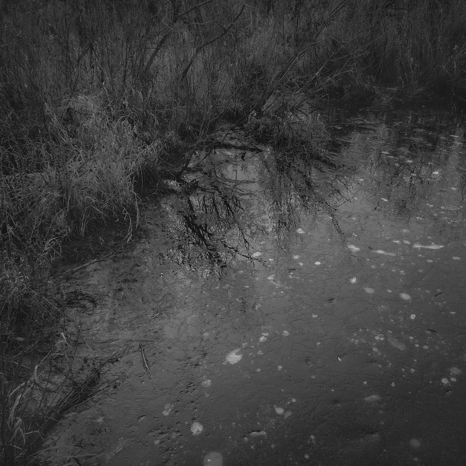 ice_reflection_web.jpg