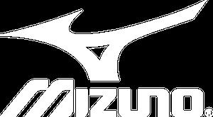 Mizuno_RunBird_Blu1.png