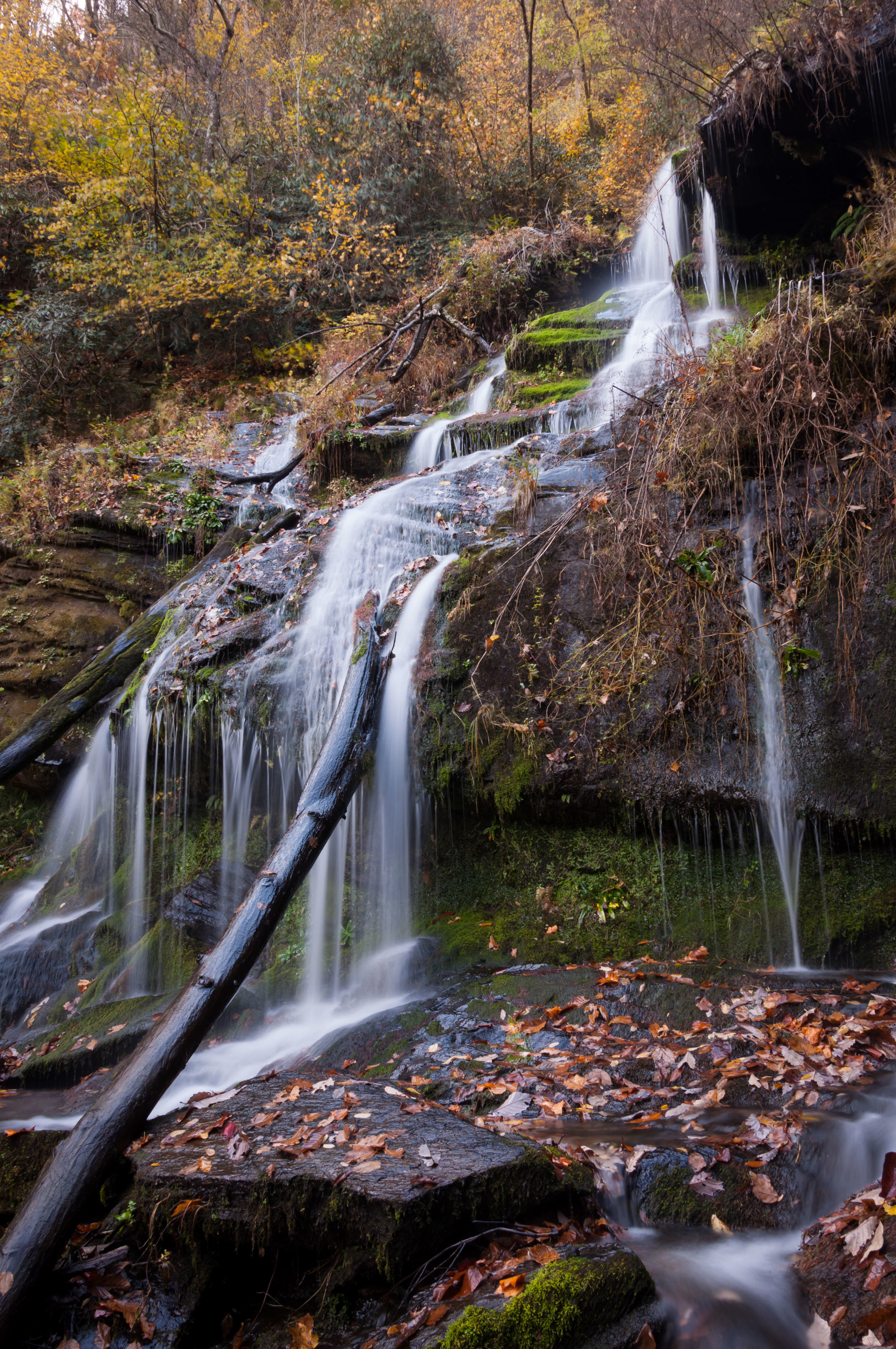 CATAWBA FALLS, PISGAH NATIONAL FOREST, NEAR OLD FORT