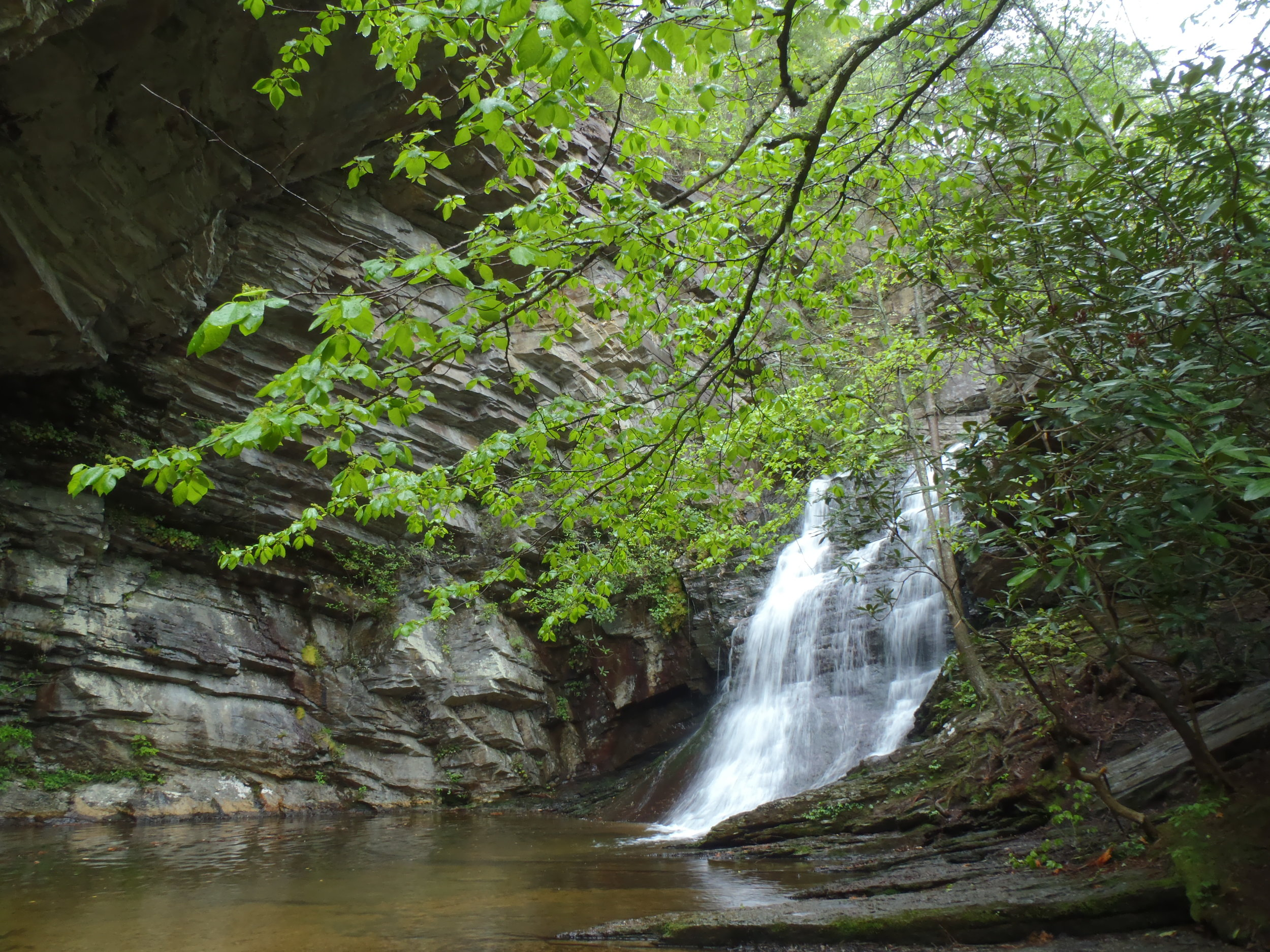 HANGING ROCK STATE PARK Photo courtesy of N.C. Division of Parks and Recreation