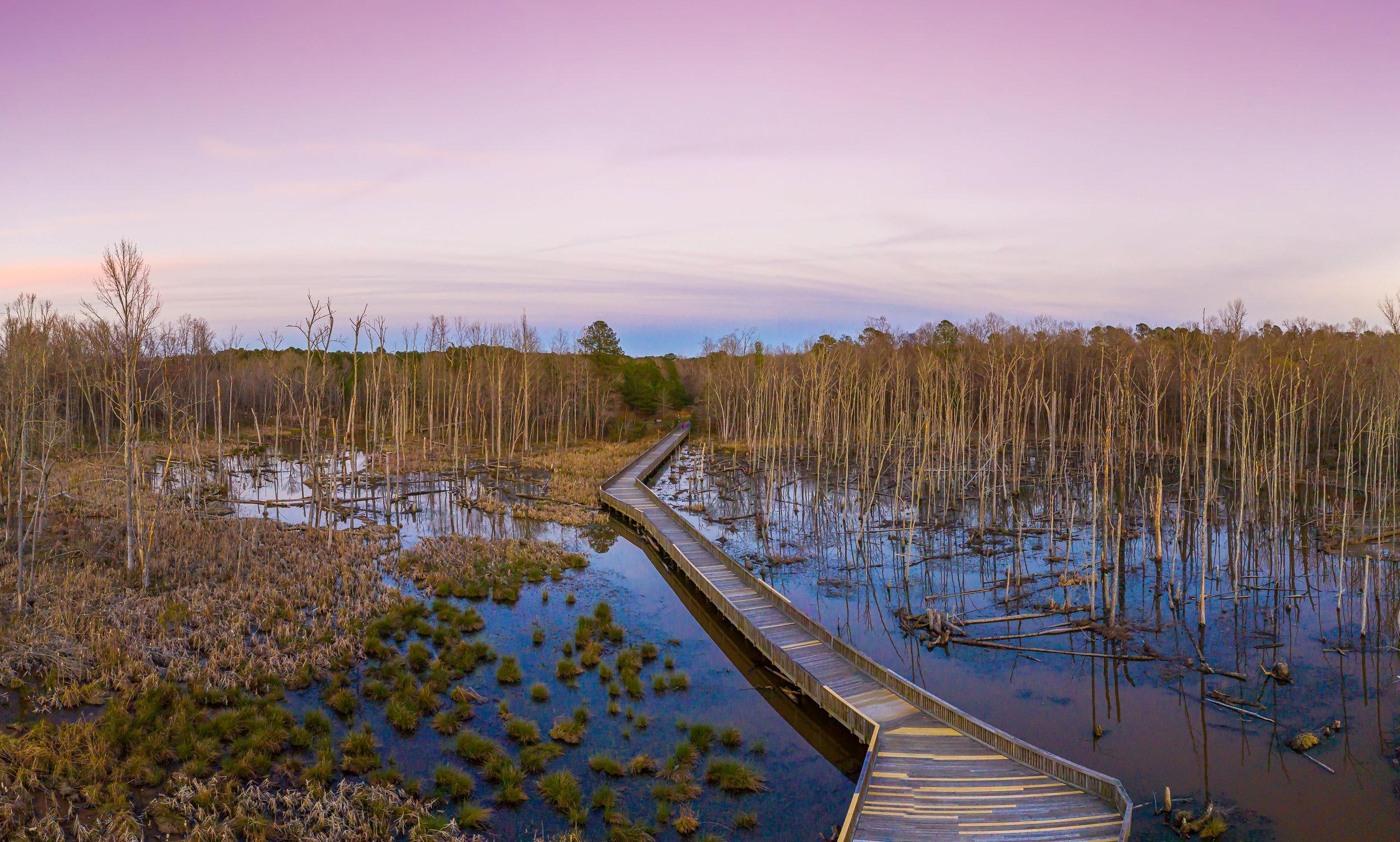 white oak trail  photo by farid sani