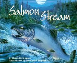 salmon stream.jpg