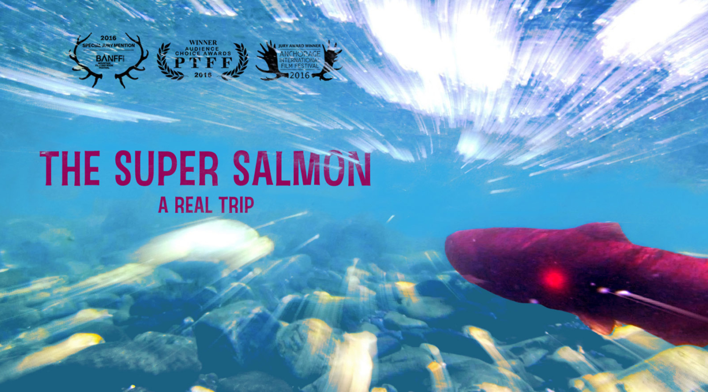 The Super Salmon: A Real Trip -
