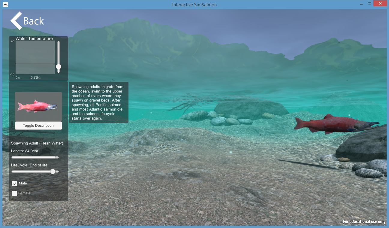 University of Idaho: Salmon Sim - The Salmon Sim project is a developed simulation which employs active learning through exploration and immersive experience to better understand the lifecycle, behavior, and habitat of the Alaska sockeye salmon. The currently phase of development has placed emphasis on spawning migration portion of their lifecycle.Visit the University of Idaho Virtual Technology and Design website to learn more and download the simulation program here: Salmon Sim