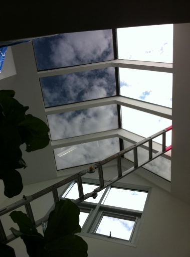 Skylights at Masonic Building