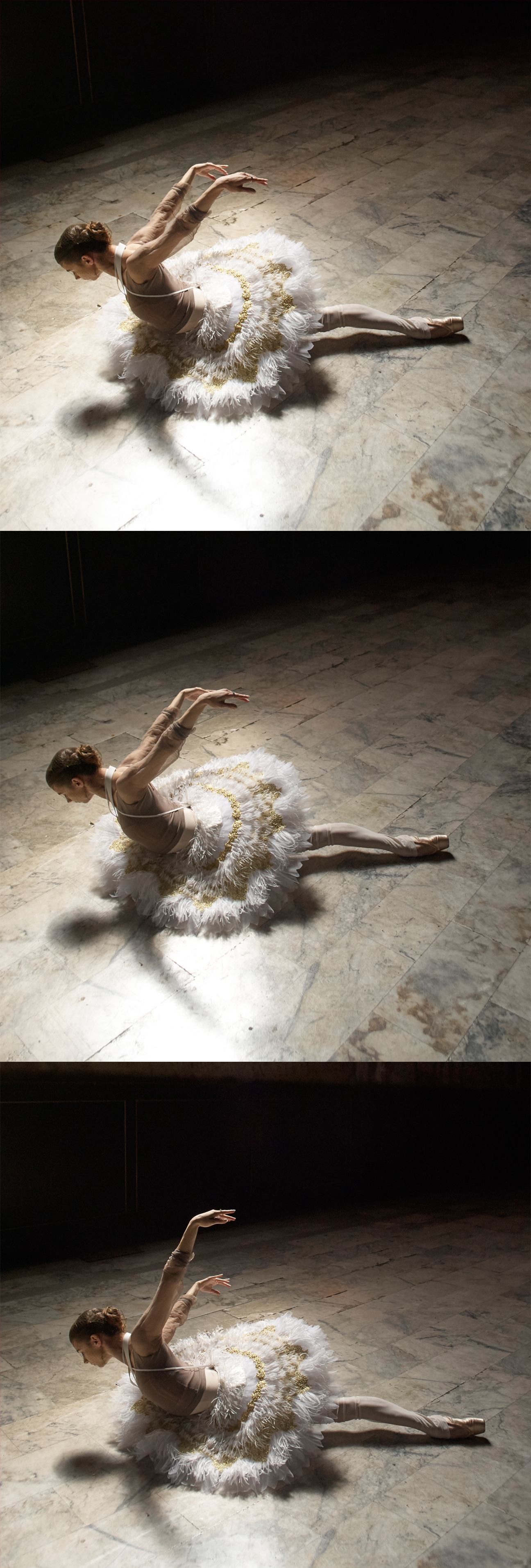 Tutu by Xinya Yang, BFA Fashion Design. Leotard and Pointe Shoes, model's own. All stockings, stylist's own.