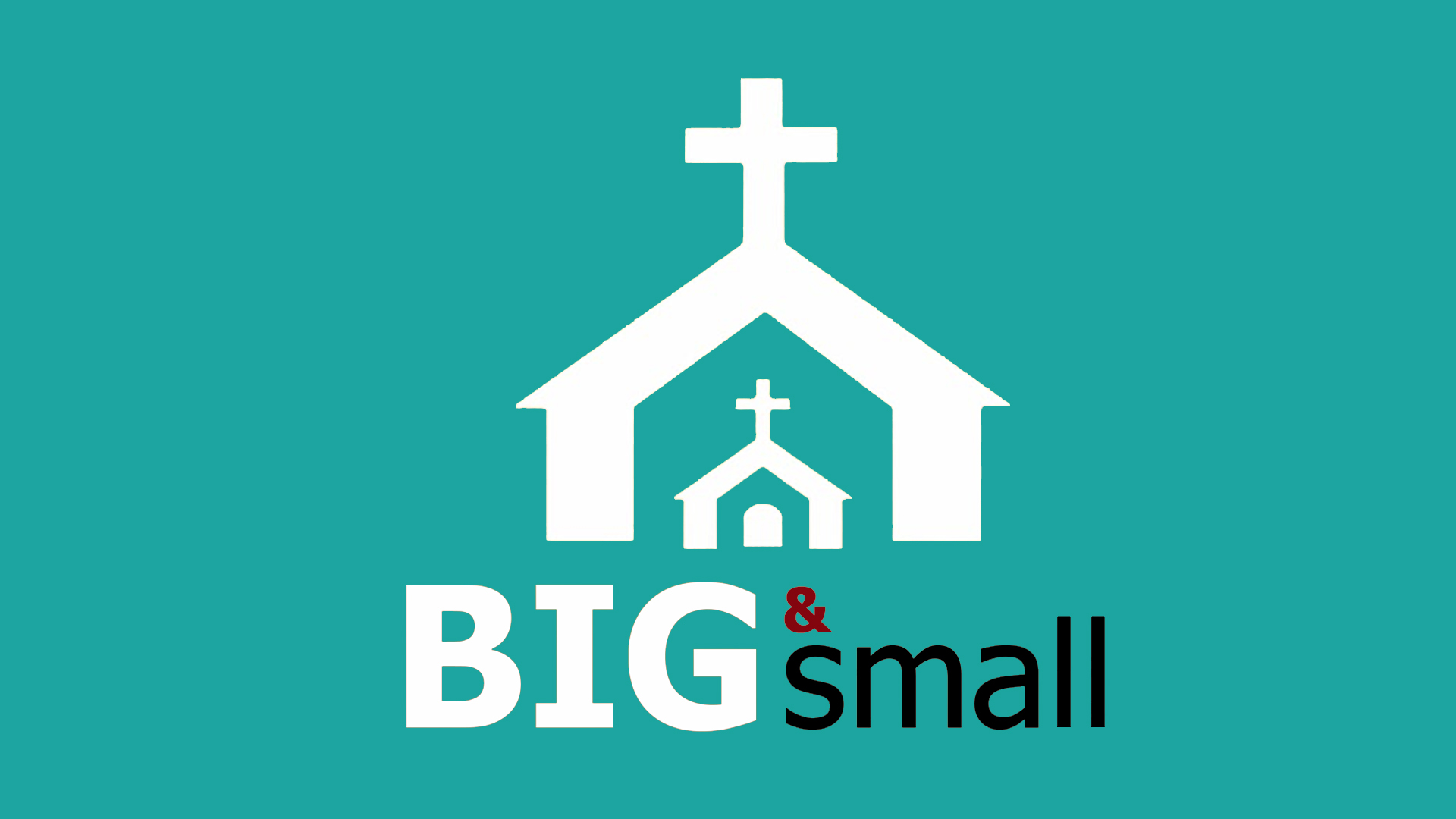 Big and Small Main Logo.jpg